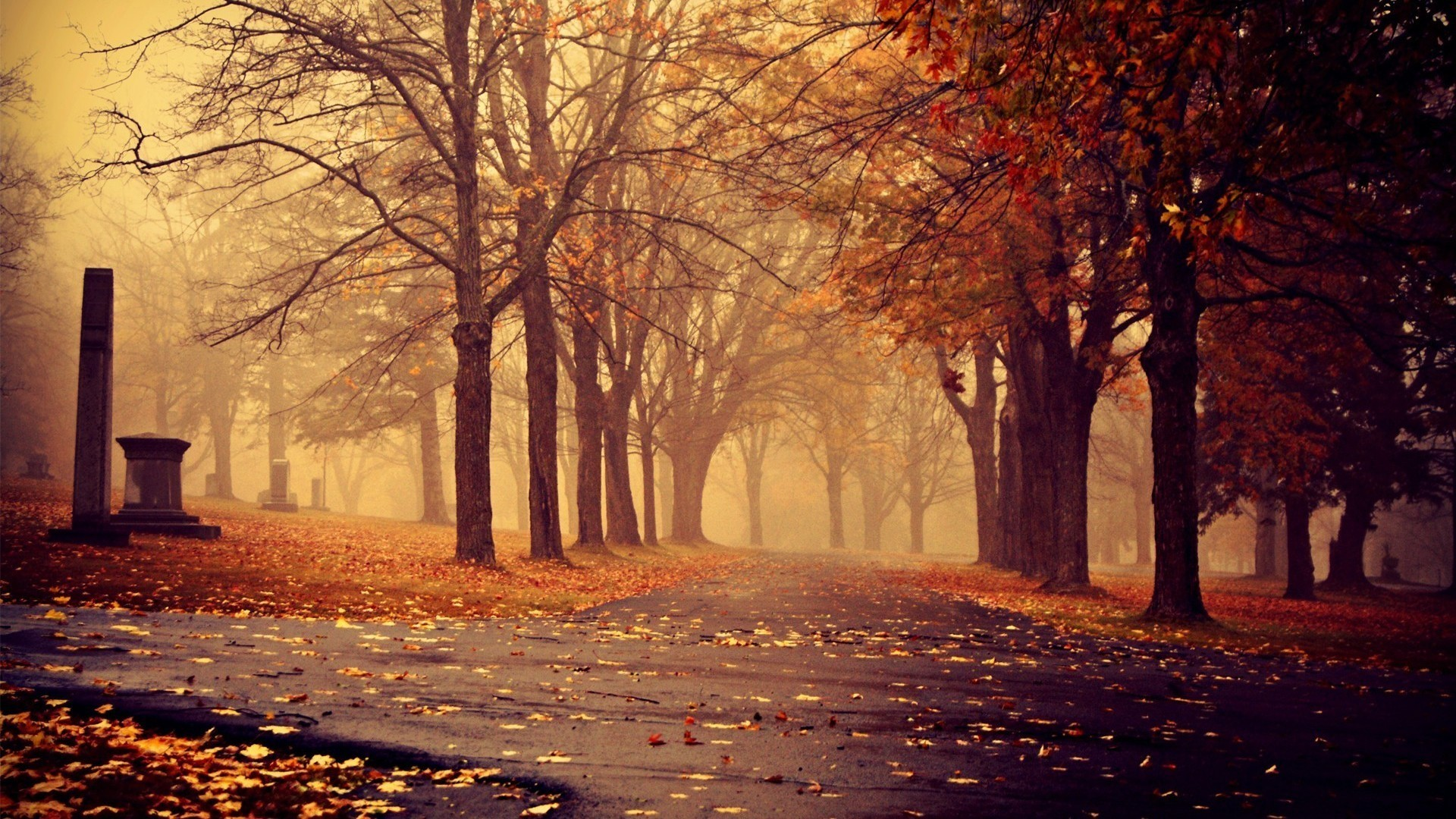 fall background pictures (62+ images)