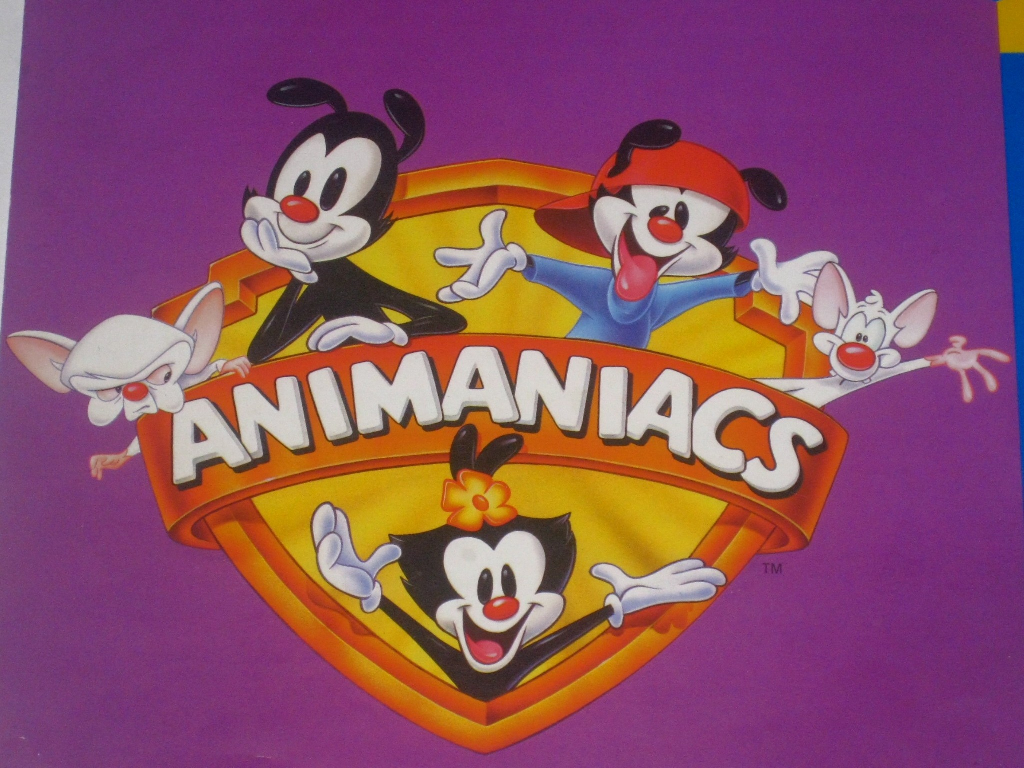 Animaniacs Wallpapers ...