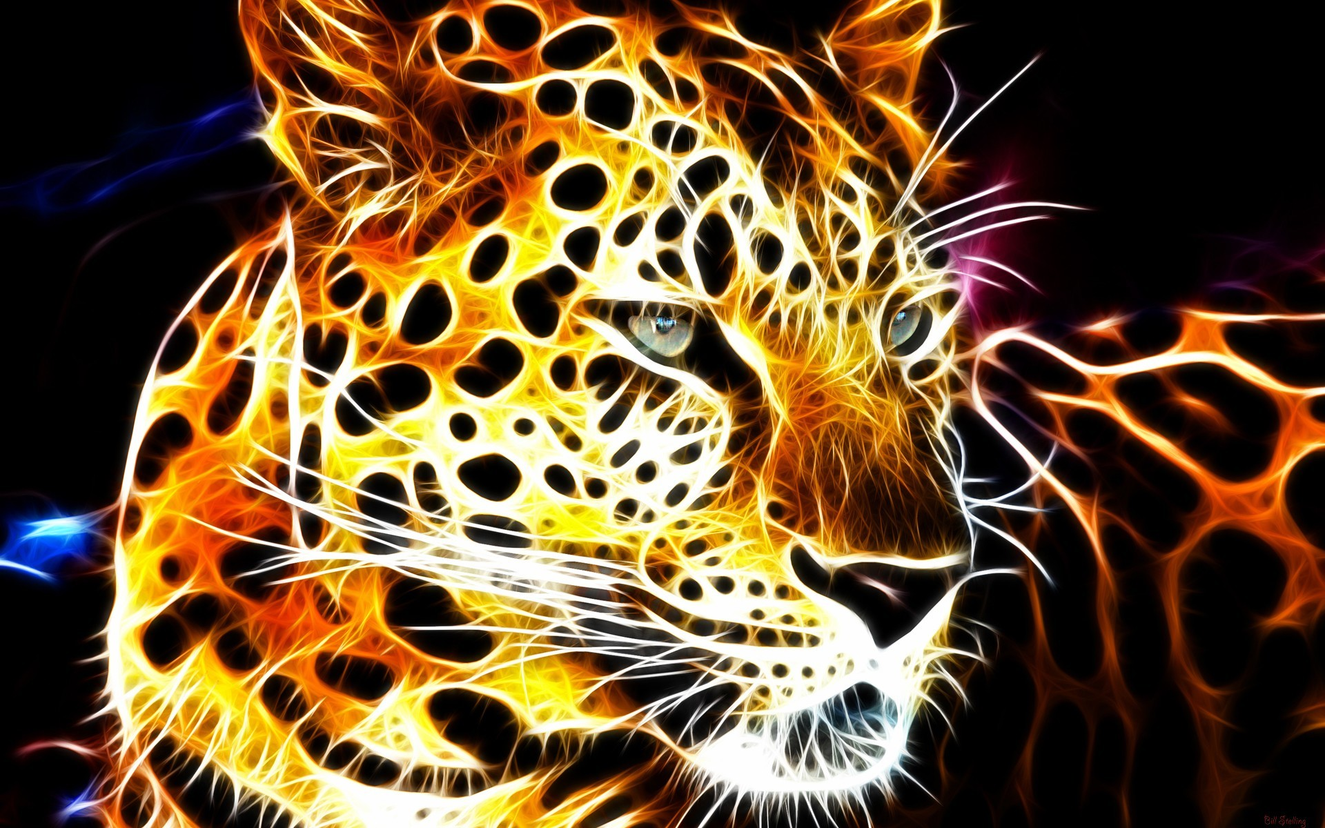 Cool animal backgrounds 66 images - Moving animal wallpapers ...