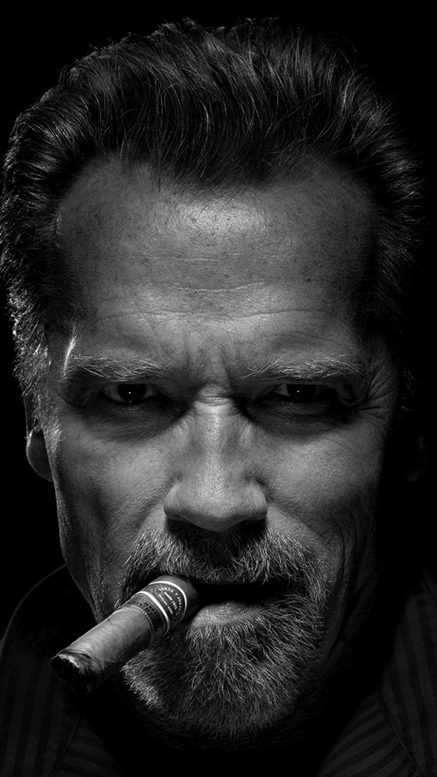 Arnold Schwarzenegger Wallpaper (75+ images) Arnold Schwarzenegger