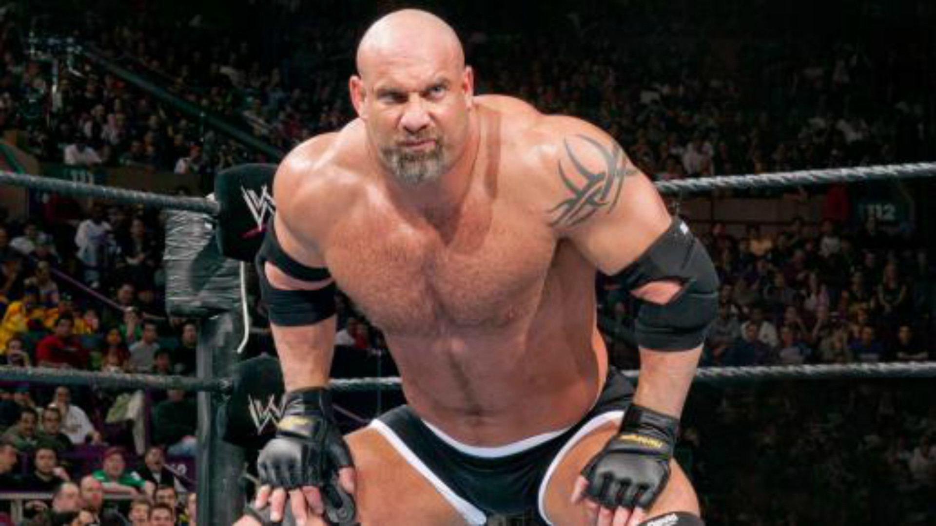 1920x1080 WWE Survivor Series: Can Goldberg cope with Brock Lesnar?