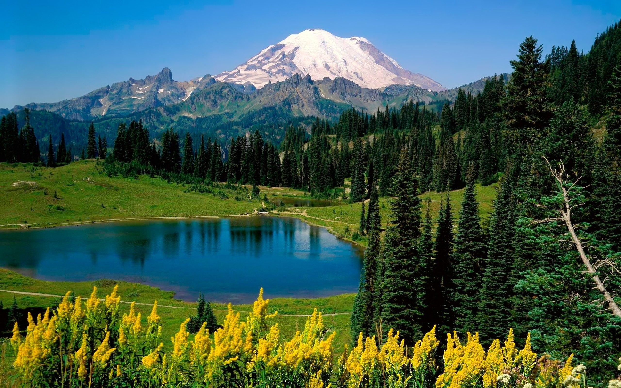 2560x1600 Bild: Mount Rainier Washington State wallpapers and stock photos. Â«