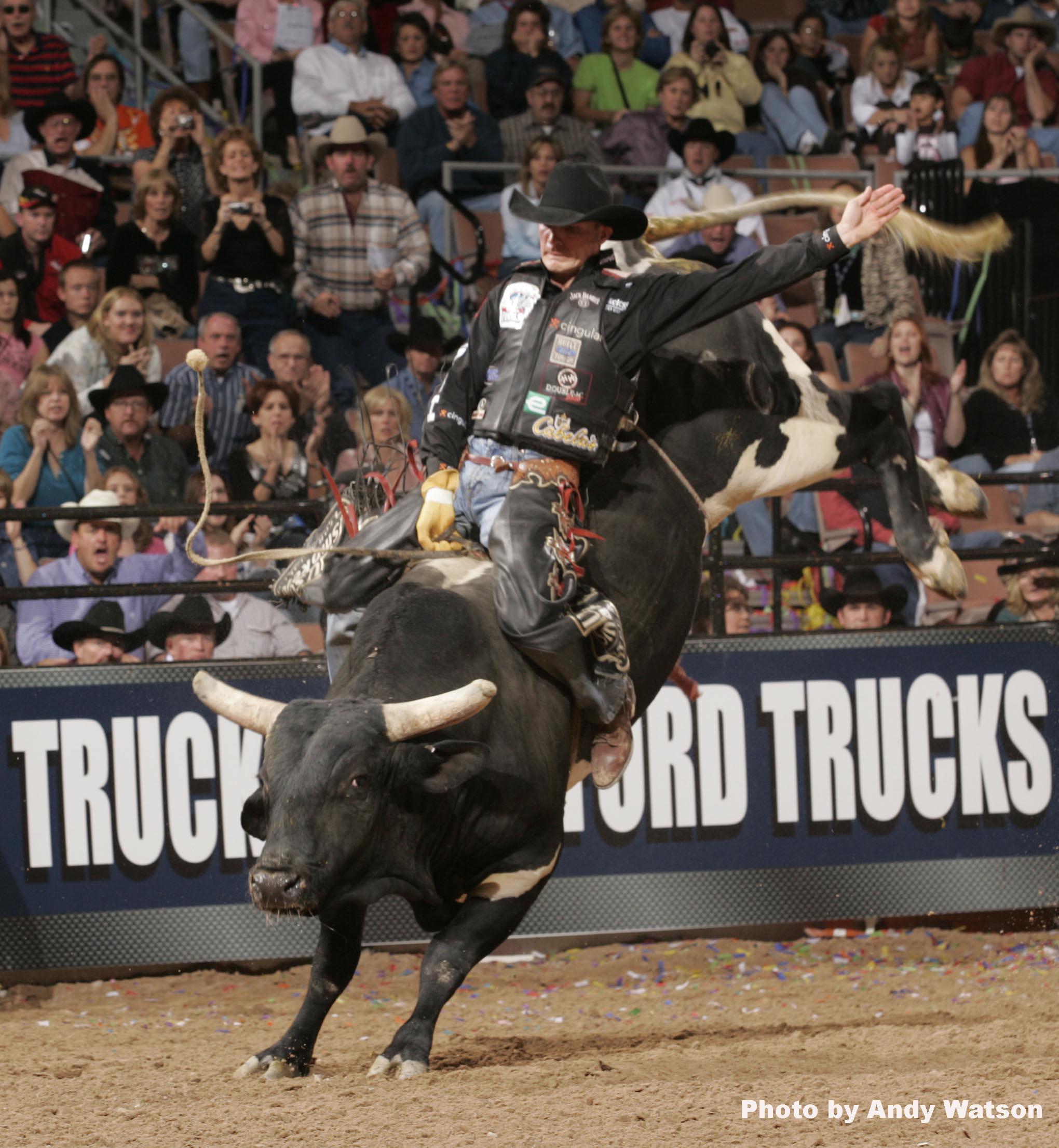 Pbr bull riding wallpaper 69 images - Bull riding wallpapers ...