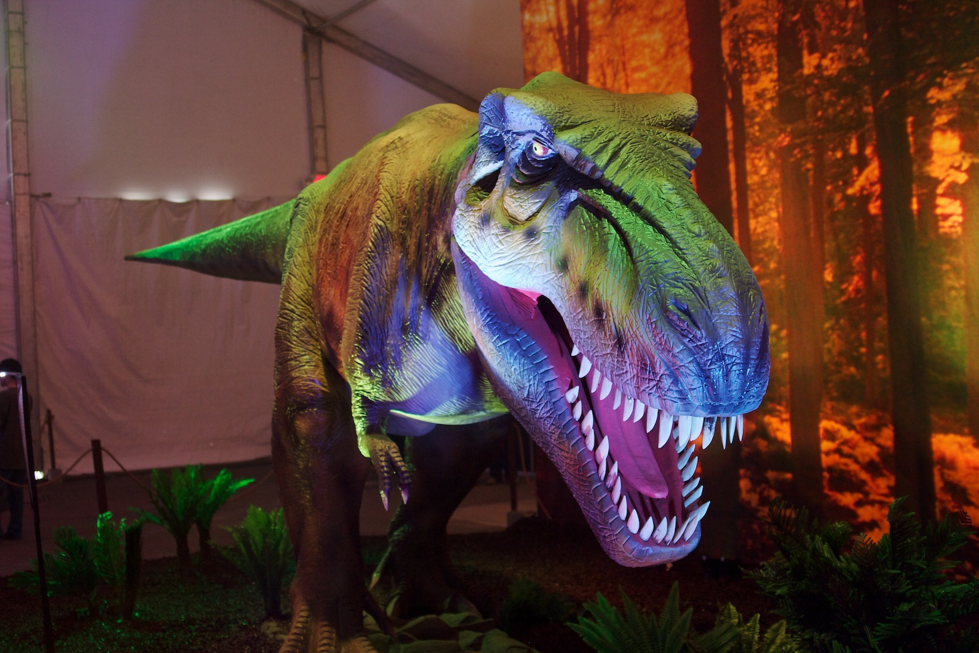 1920x1280 T-Rex Dinosaur wallpaper - Click picture for high resolution HD wallpaper