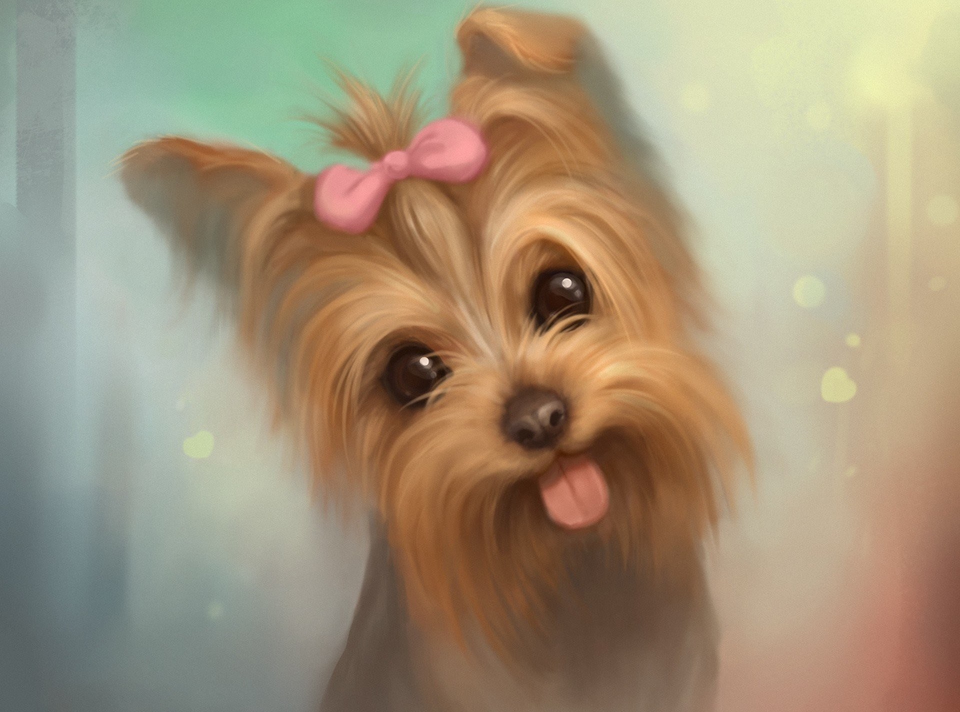 1920x1425 L~B~J~ images Cute Yorkie Dog HD wallpaper and background photos