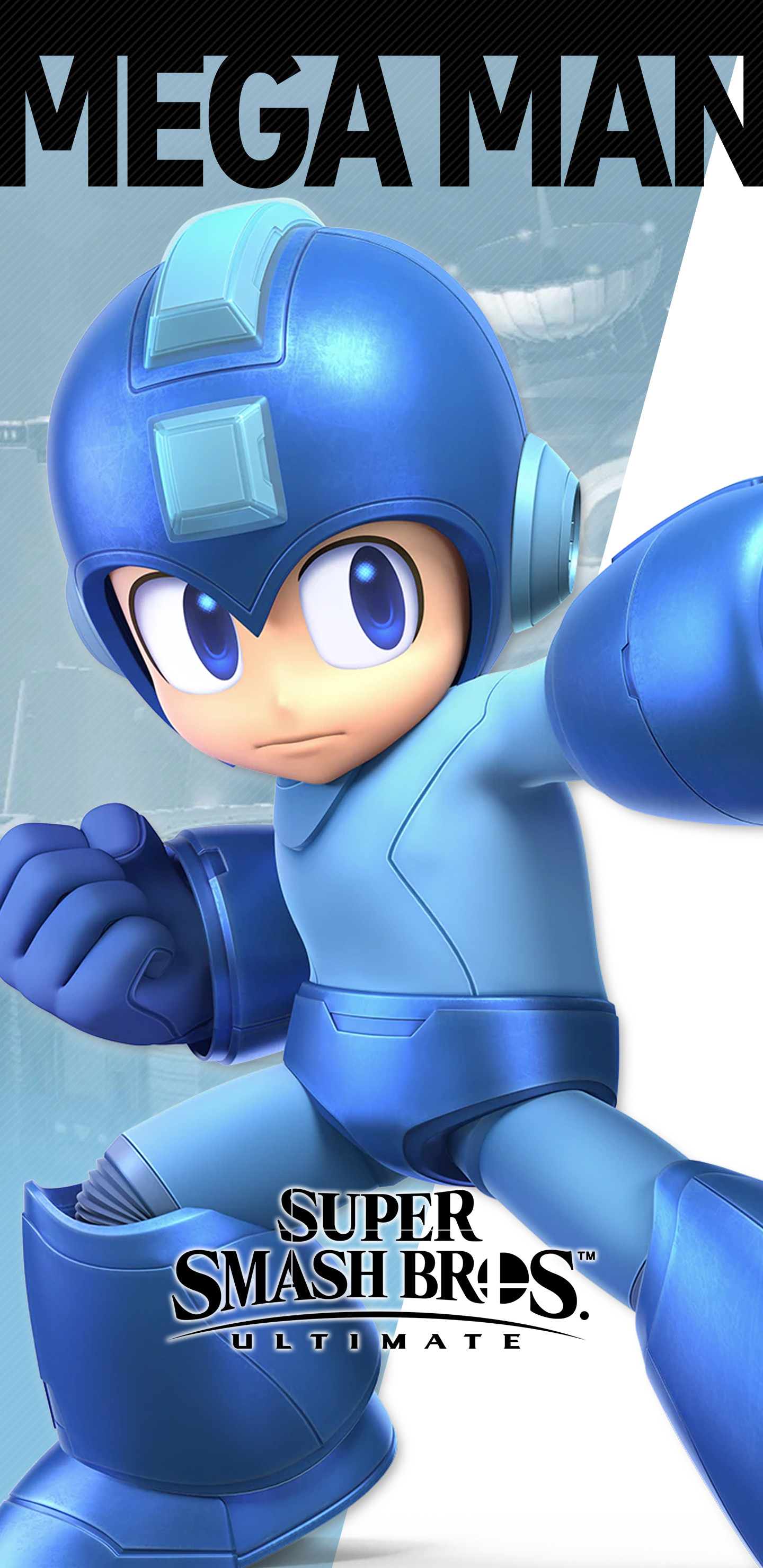 Mega Man: Fully Charged #3 (Meyers Cover)   Fresh Comics