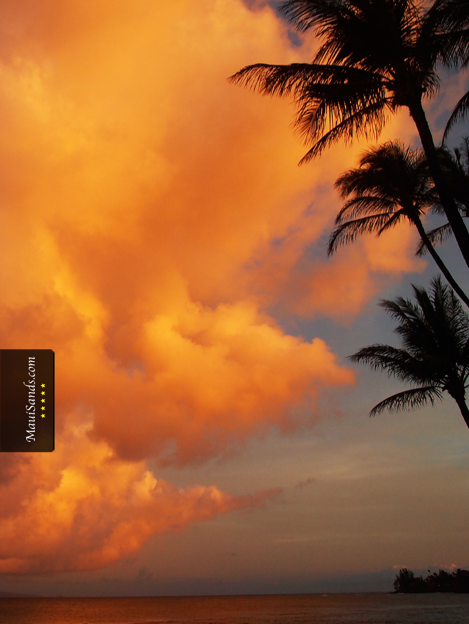 1538x2048 Click here to download the free Hawaii Sunset HD background ...