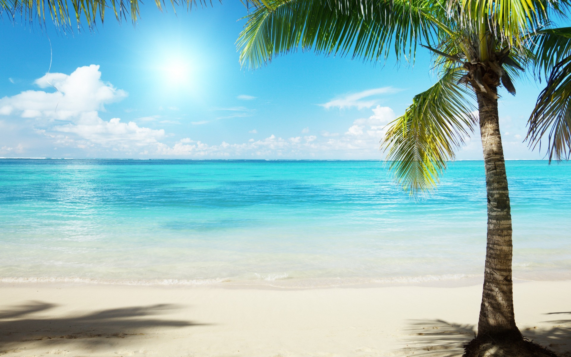 Caribbean Beach Pictures Wallpaper 70 Images