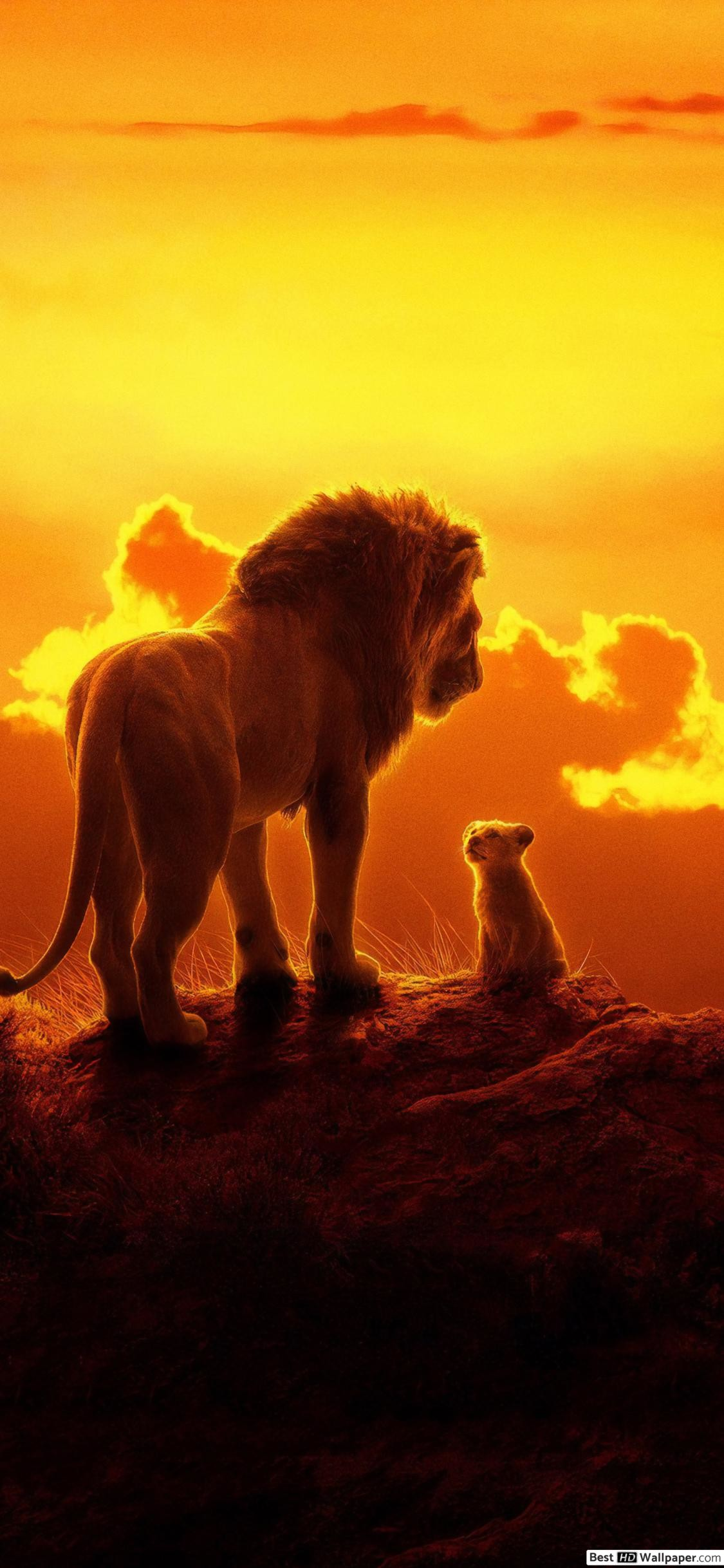 Lion King iPhone Wallpaper (89+ images)