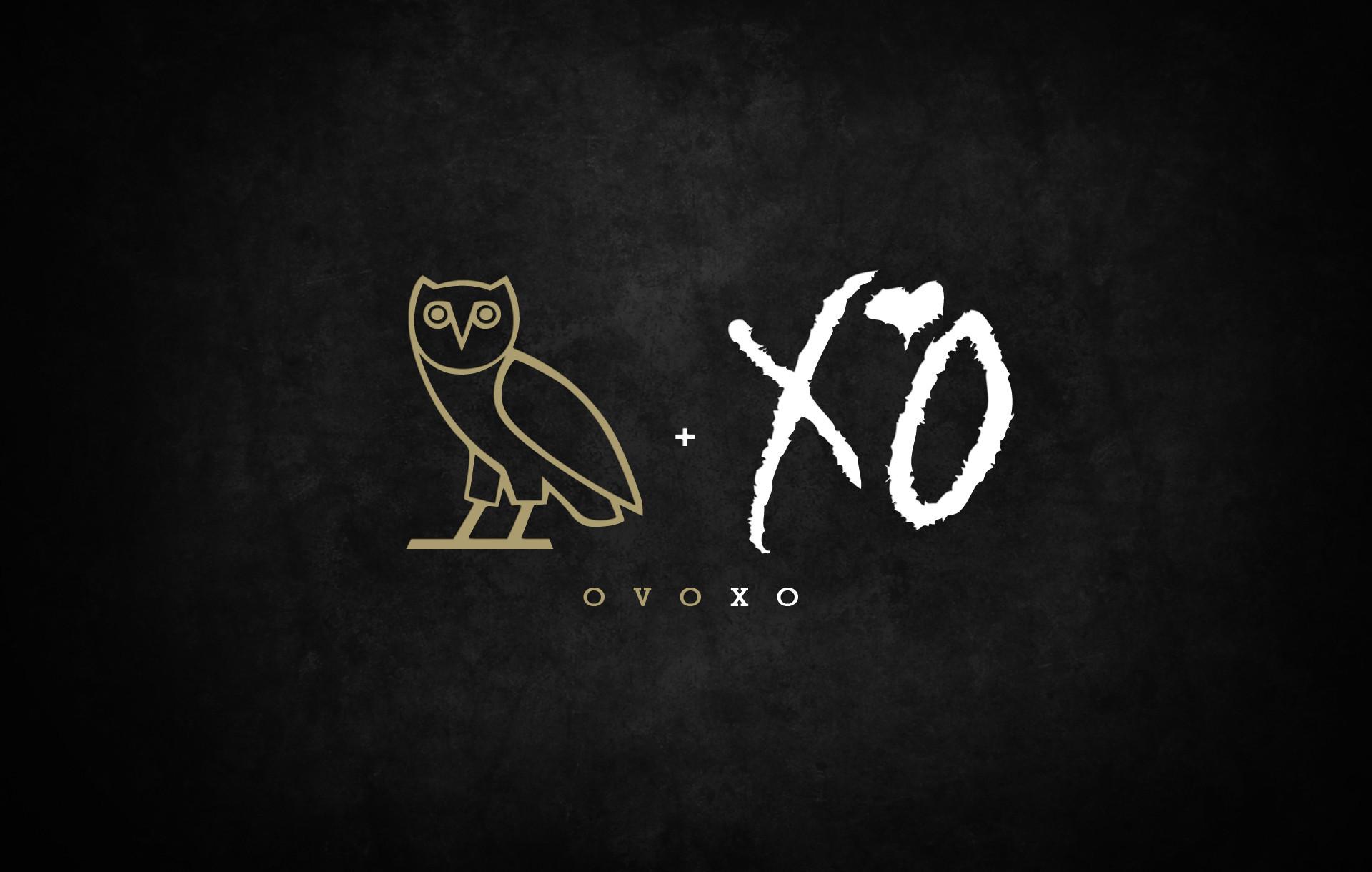 Drake Owl IPhone Wallpaper (74+ Images