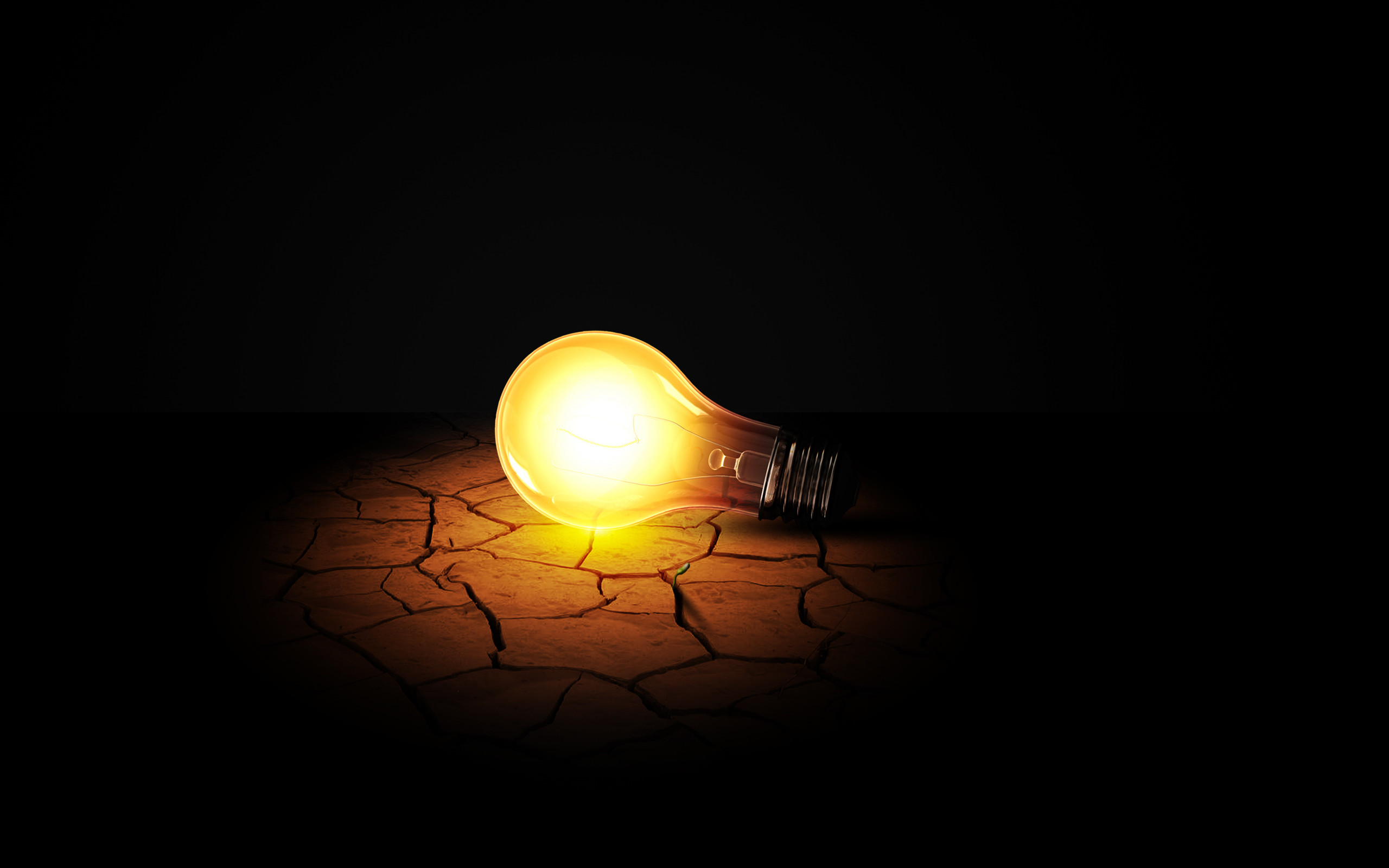 2560x1600 Man Made - Light Bulb Lamp Plant Life Earth Ground Wallpaper
