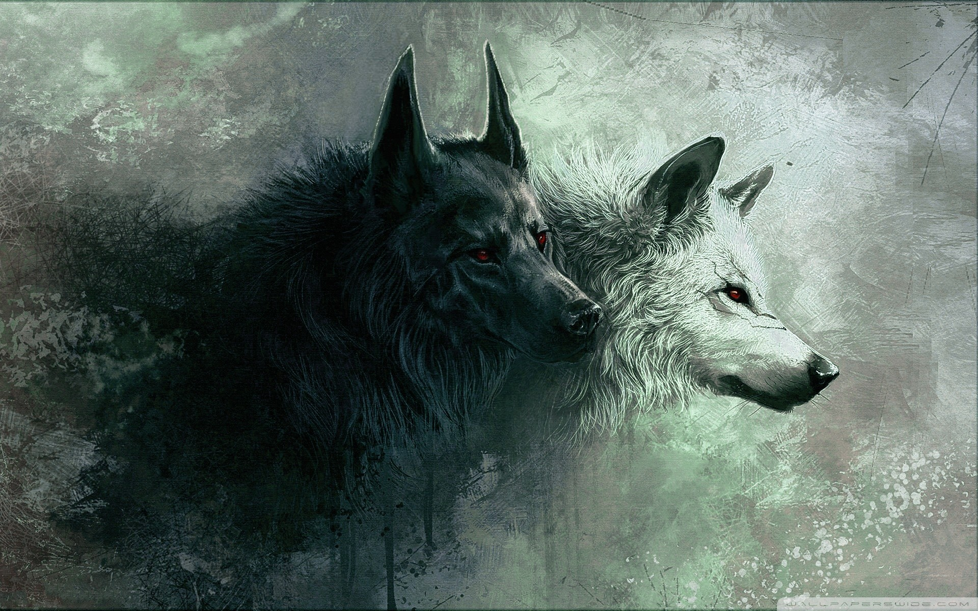 1920x1200 Wolf wallpapers Gallery| Beautiful and Interesting  Images,Vectors,Coloring,Cliparts |Free Hd wallpapers