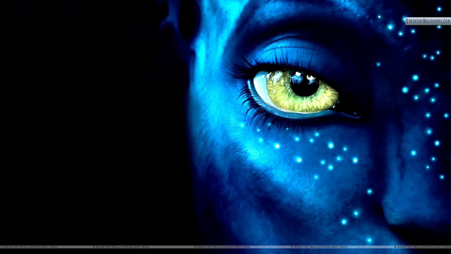 "1920x1080 You are viewing wallpaper titled ""Avatar Movie ..."