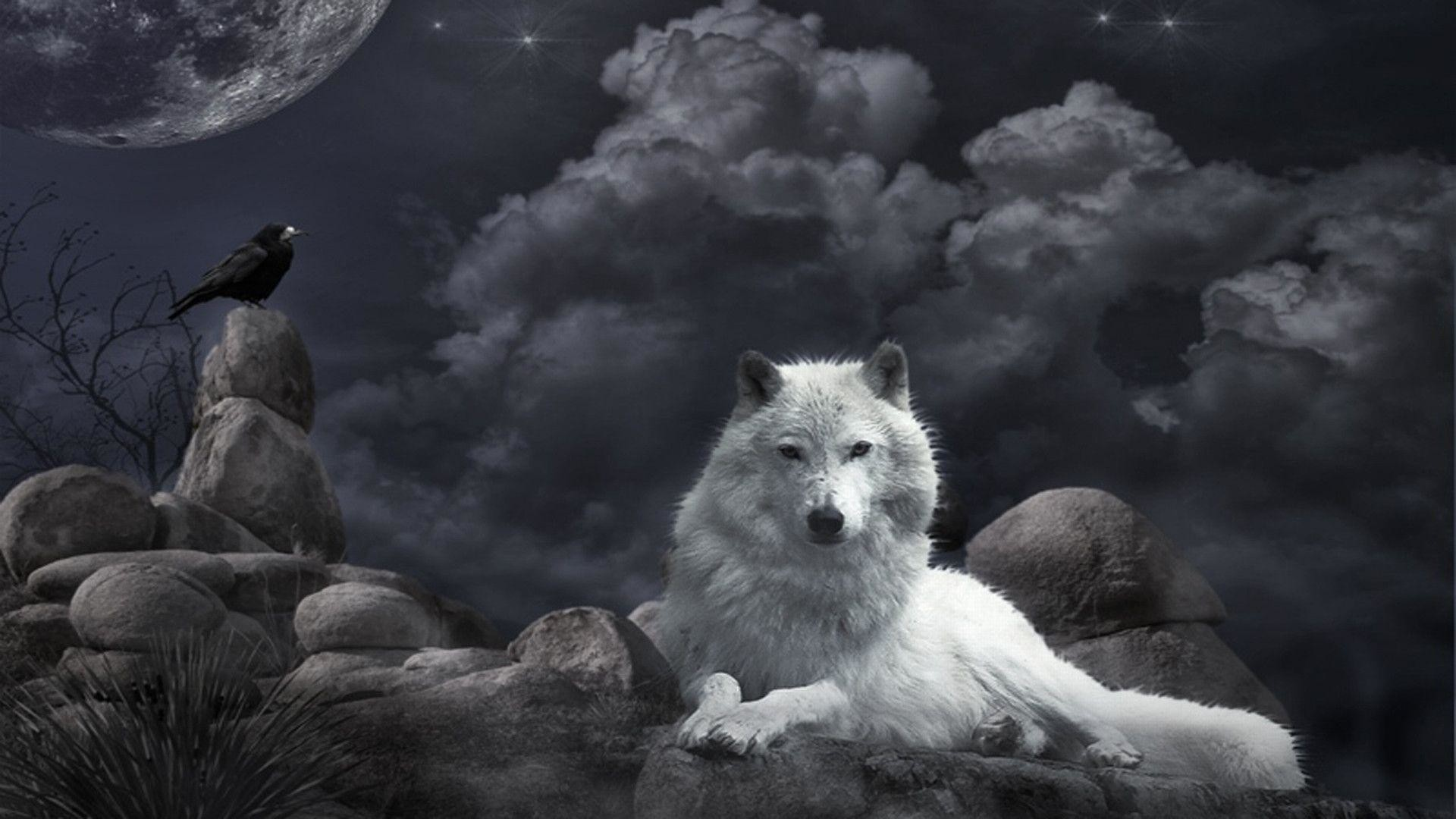 1920x1080 745 Wolf Wallpapers | Wolf Backgrounds