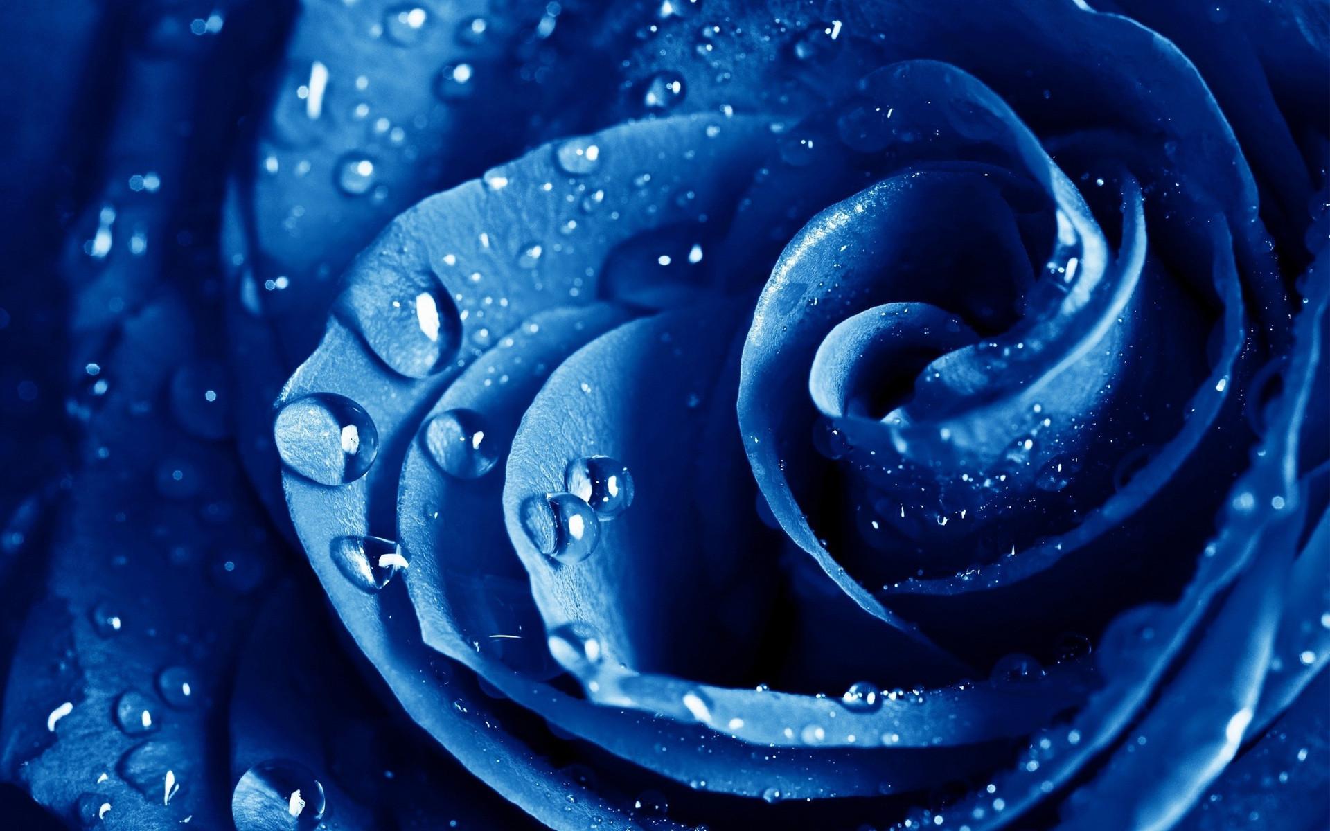 23 calming and beautiful blue wallpapers wpsnow blue drops izmirmasajfo