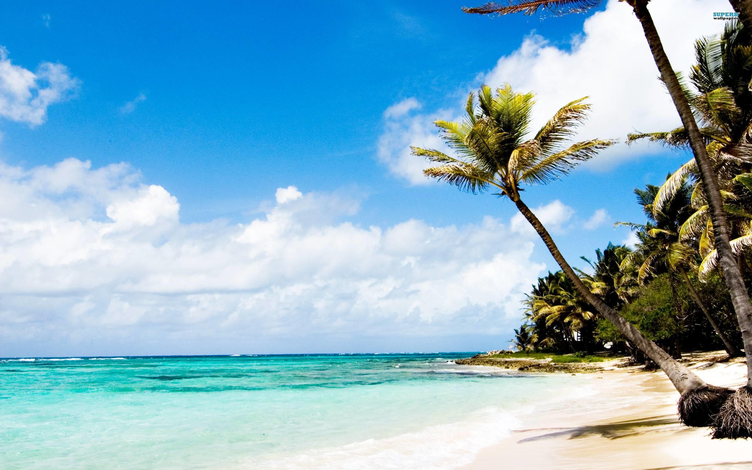 Beach Wallpaper: Caribbean Beach Wallpaper (65+ Images