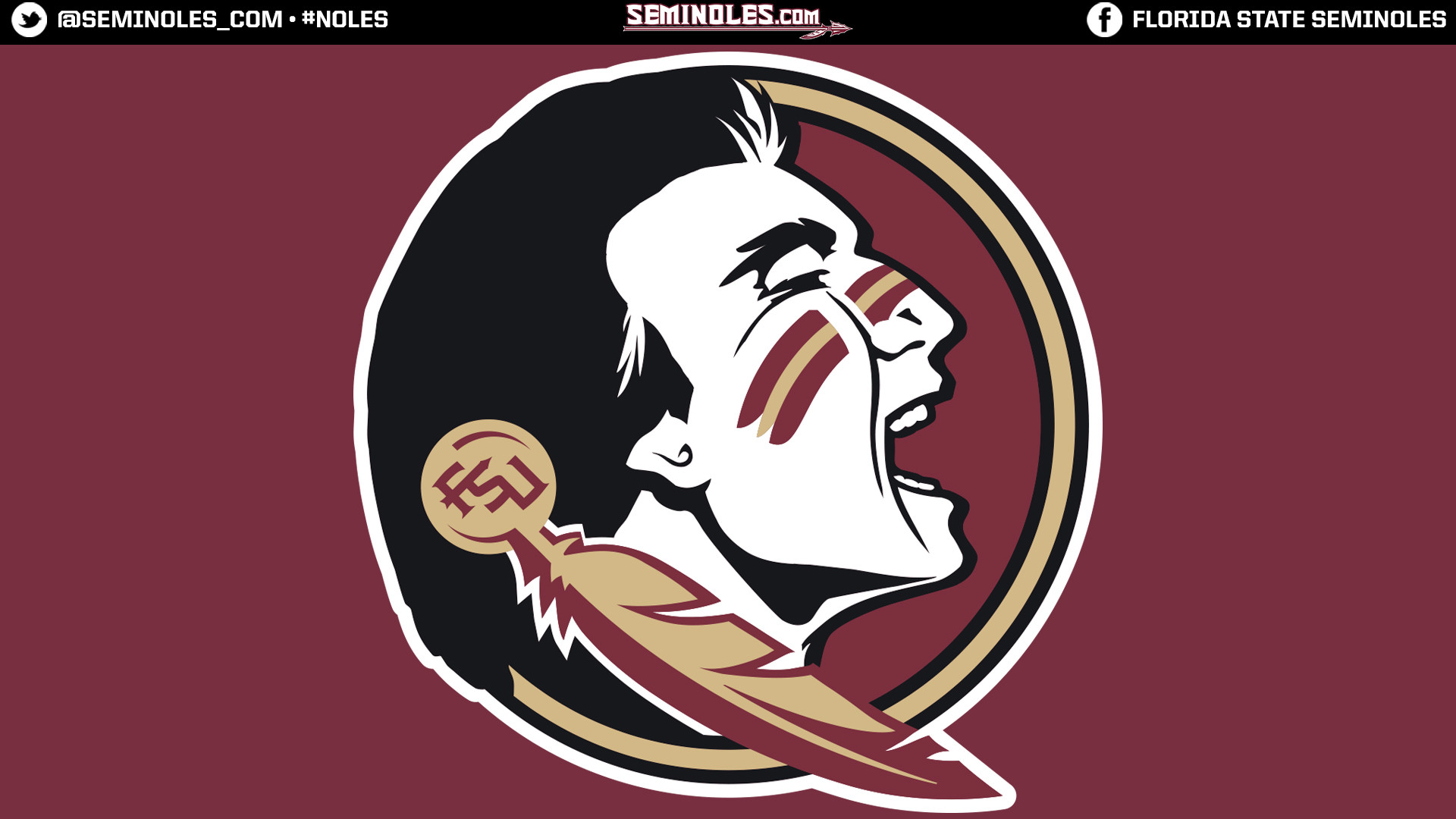 1920x1080 Widescreen Seminole Head Garnet