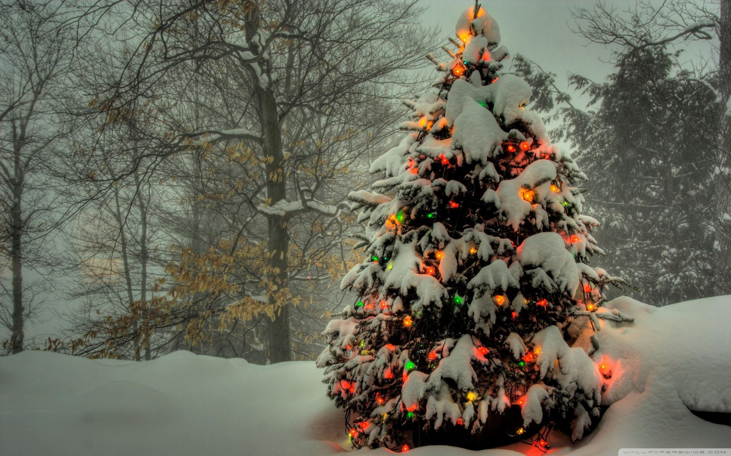 2560x1600 Download Wallpaper · dual monitor christmas wallpaper #143745. christmas hd  wallpaper widescreen ...