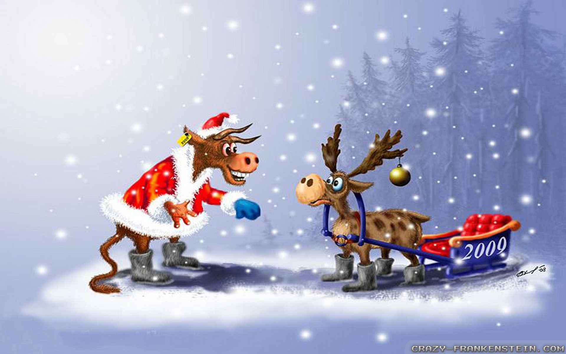 Funny Wallpapers For Laptop 60 Images: Funny Winter Wallpaper (60+ Images
