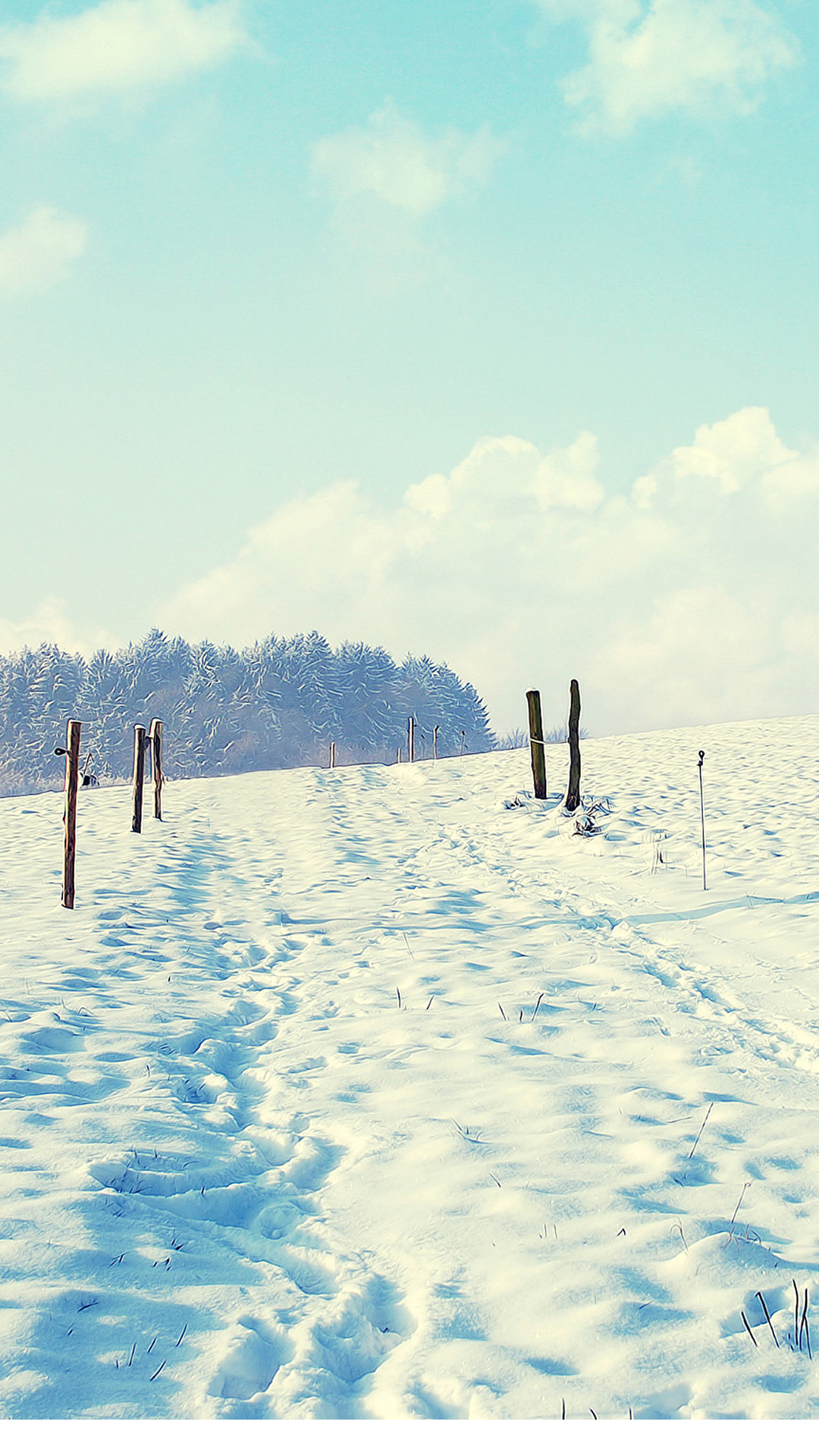 1080x1920 Outdoor Sunny Snow Filed Path #iPhone #6 #plus #wallpaper