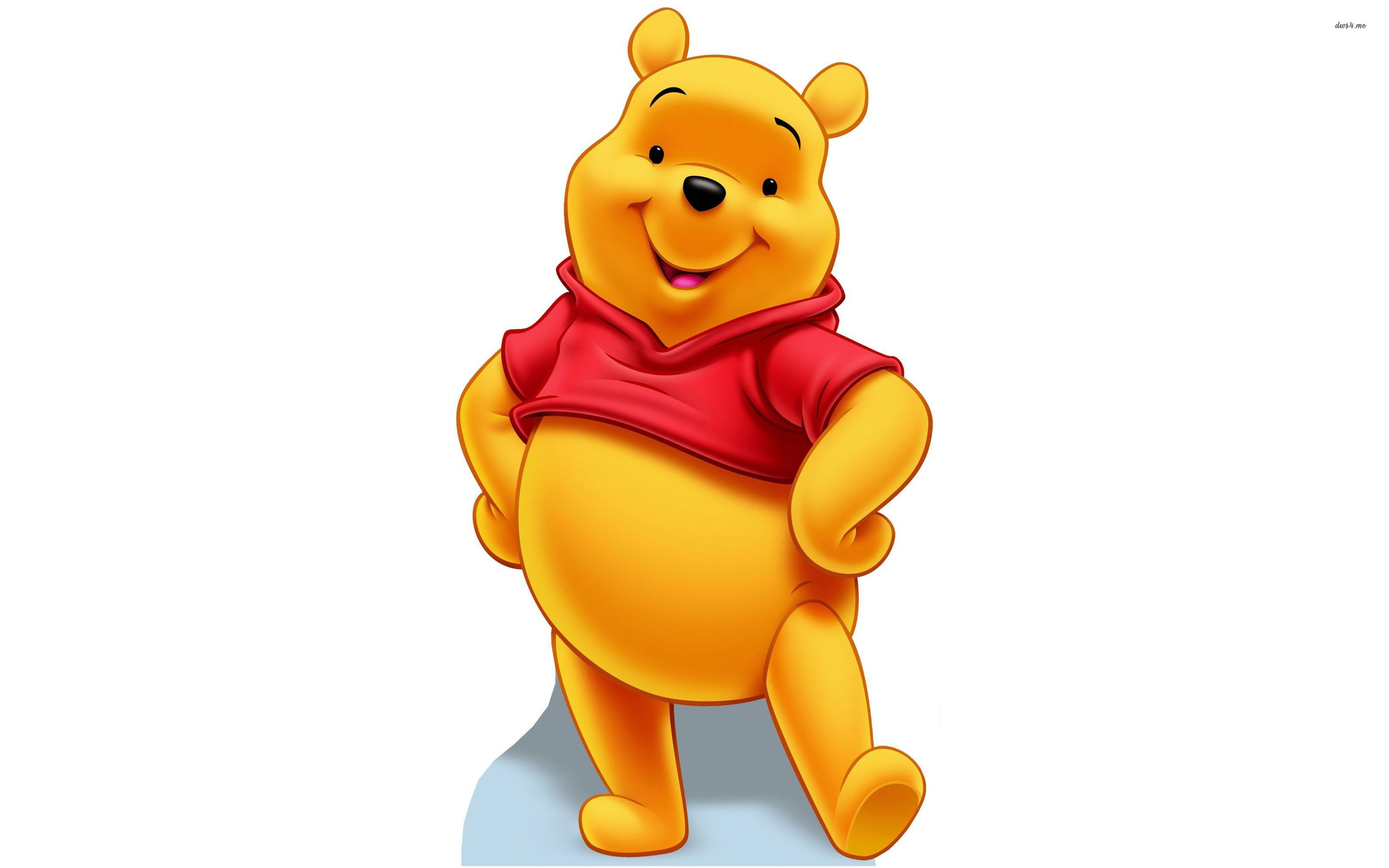 This is an image of Delicate Pooh Bear Images