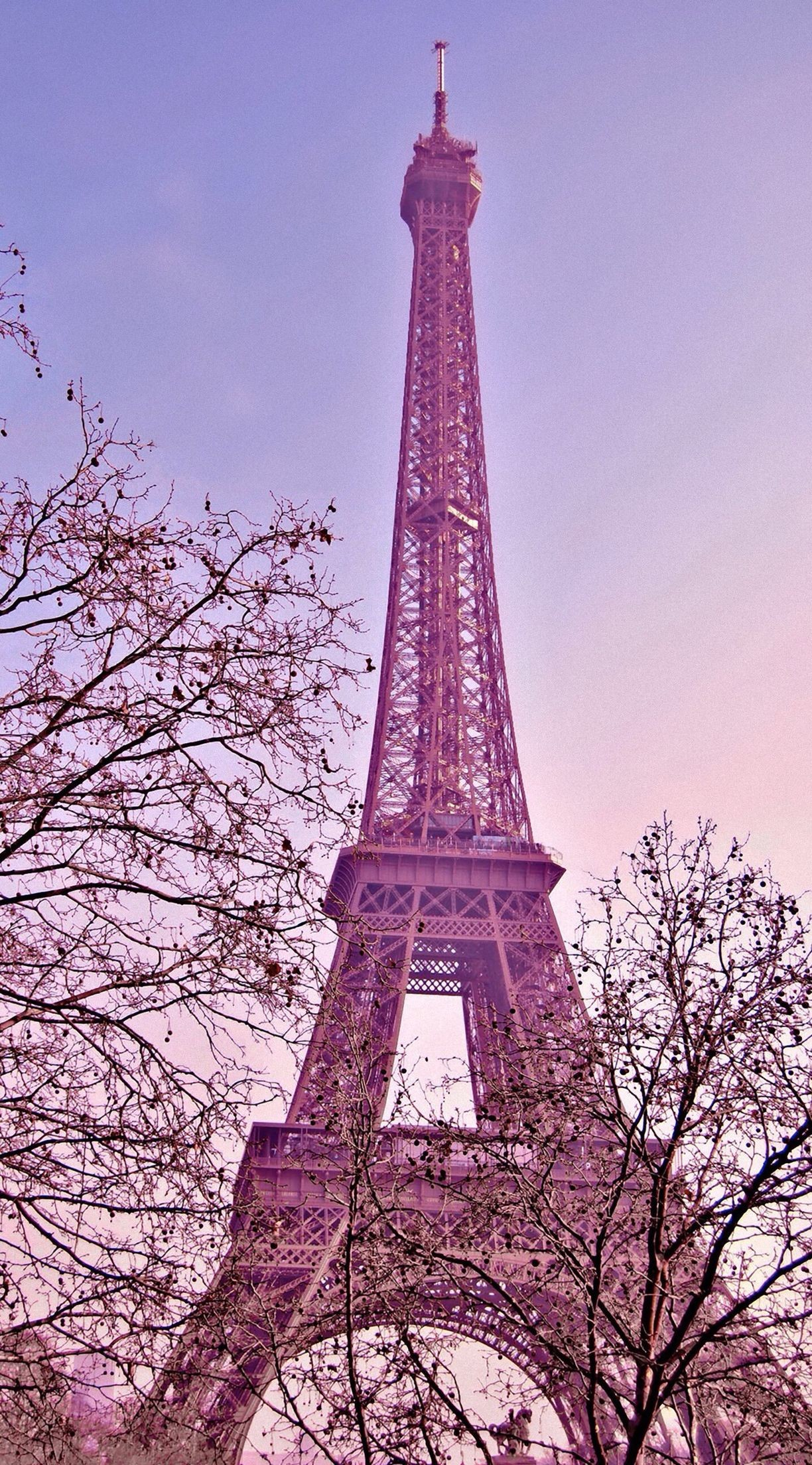 Pink Paris Wallpaper 49 Images