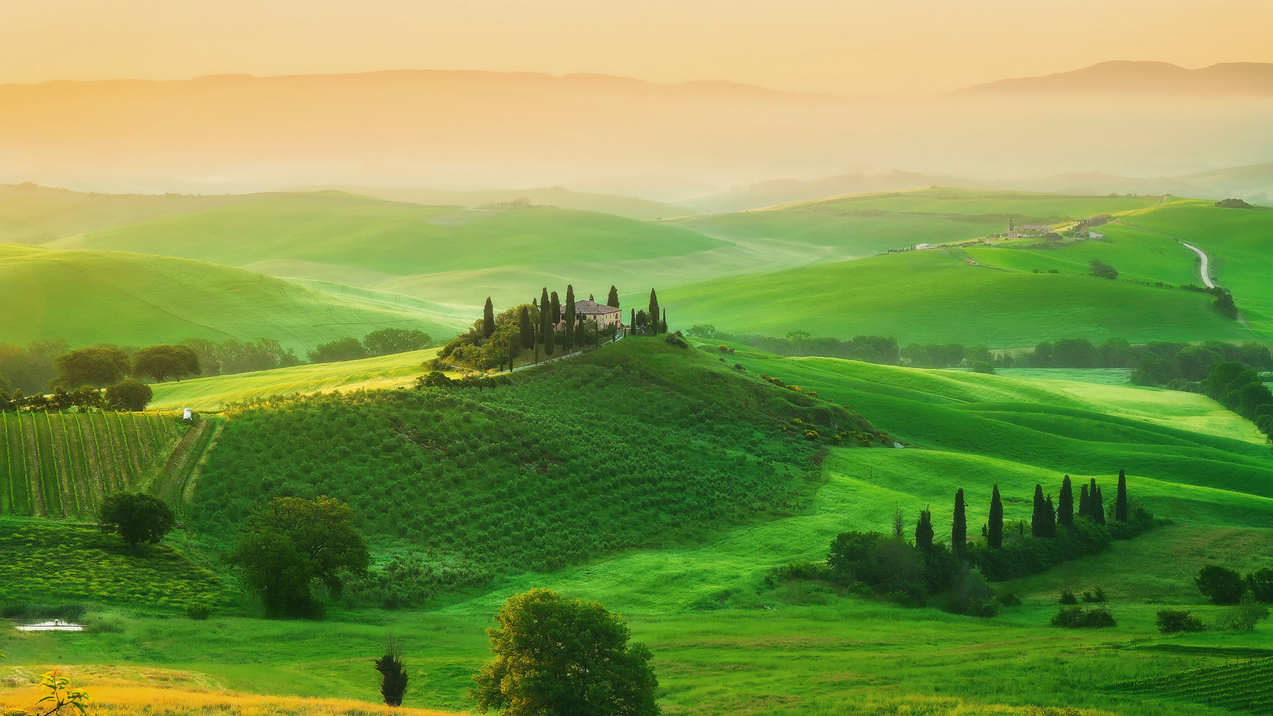 2560x1440  Wallpaper italy, tuscany, field, farm, grass