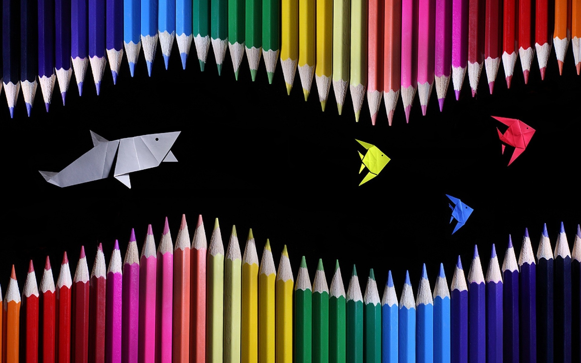 1920x1200 Colored Pencils Shark & Fishes wallpapers and stock photos