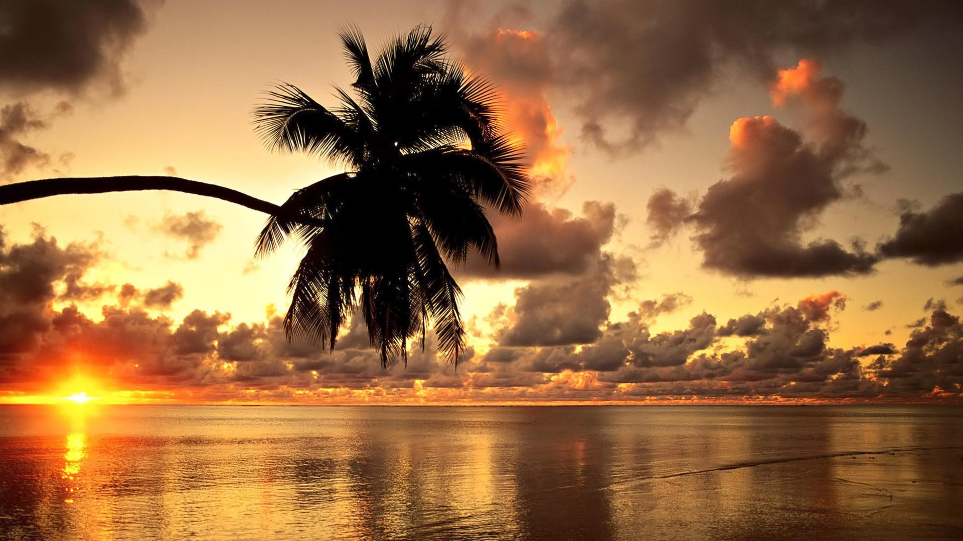 1920x1080 Tropical sunset beach beautiful scenery Wallpapers, Beach Pictures .