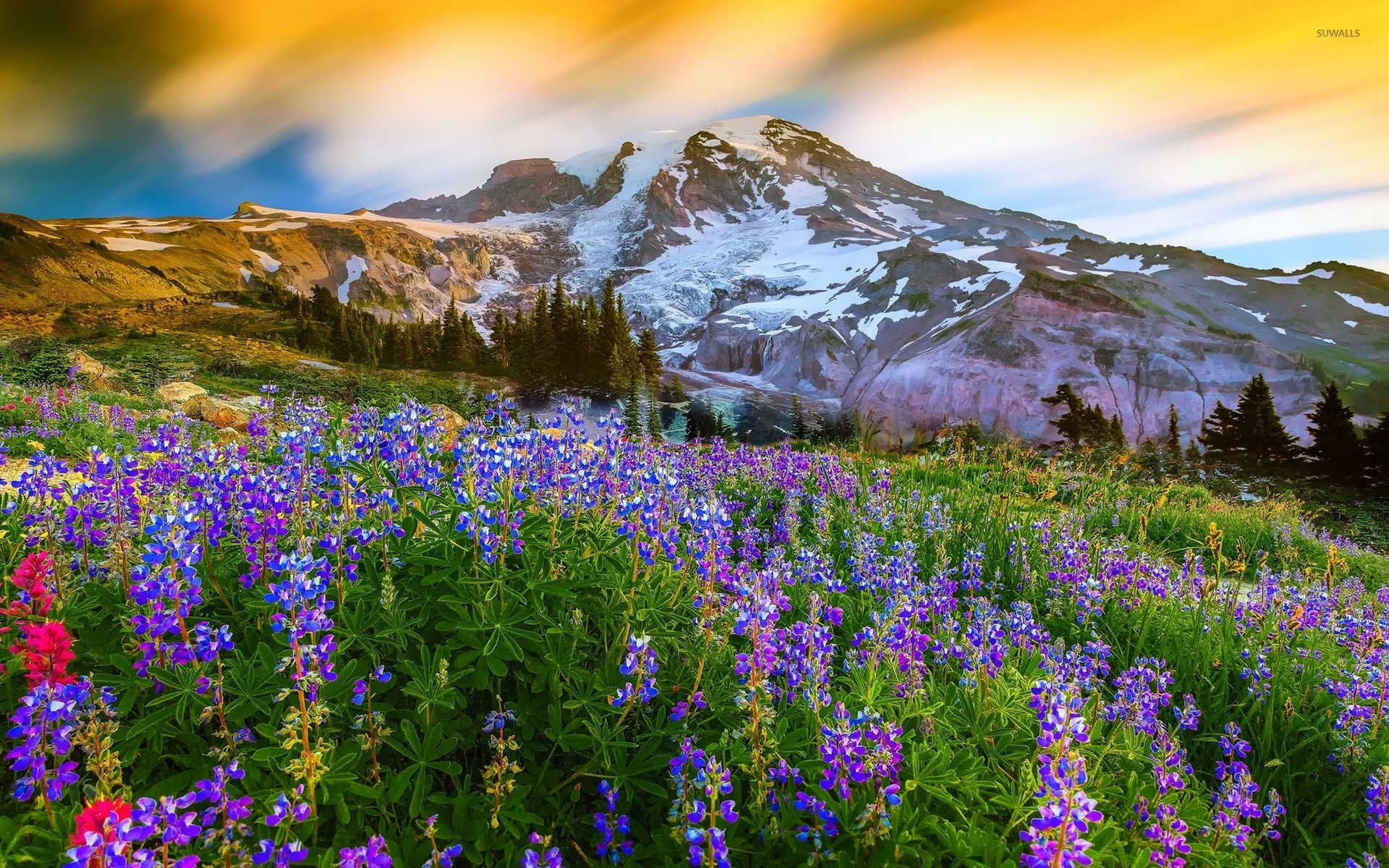 1920x1200 ... mount rainier 3 wallpaper nature wallpapers 42987 ...