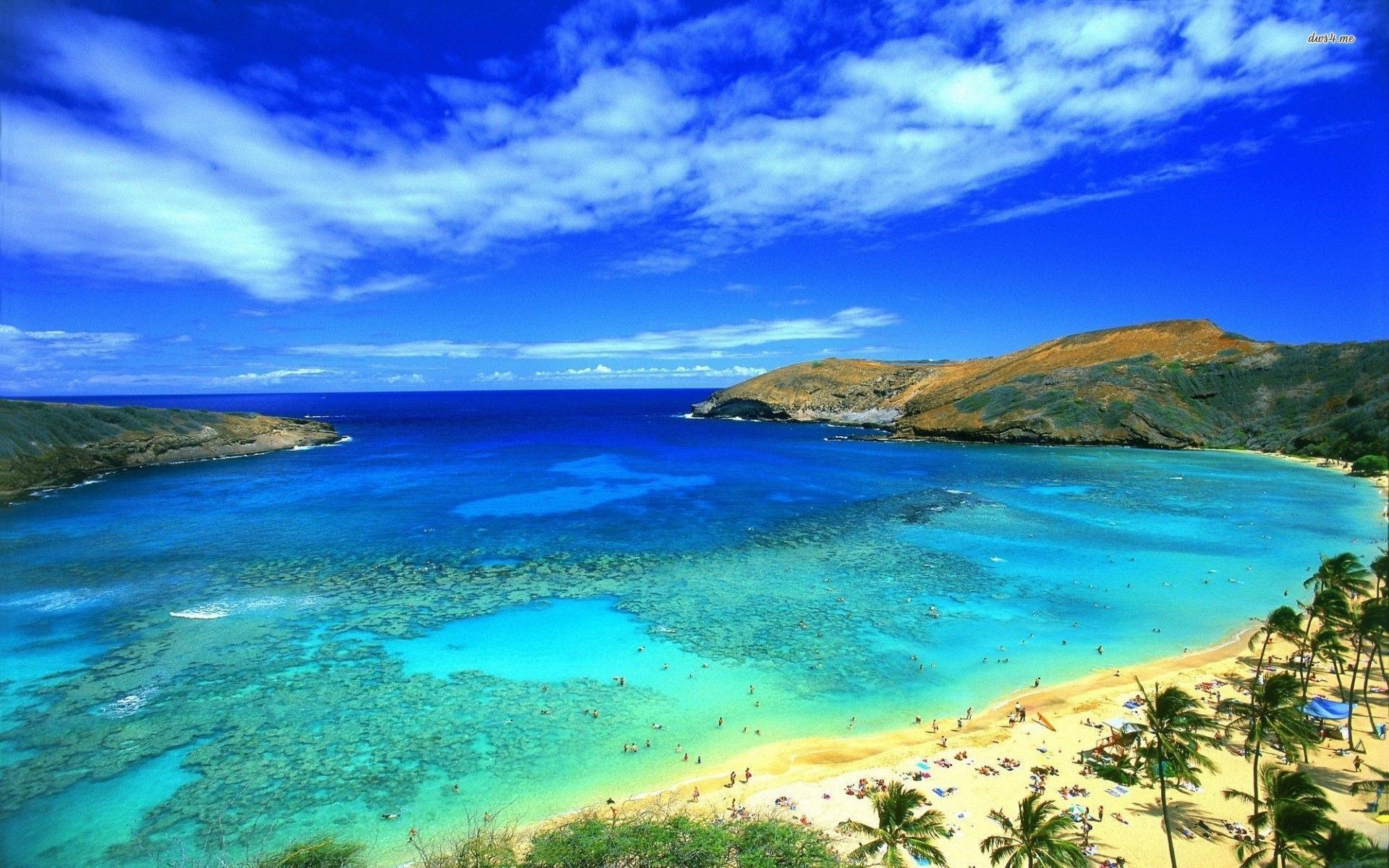 1920x1200 ... Tag: 4K Ultra HD Hawaii Wallpapers, Backgrounds and Pictures for Free,  Delena Weese ...