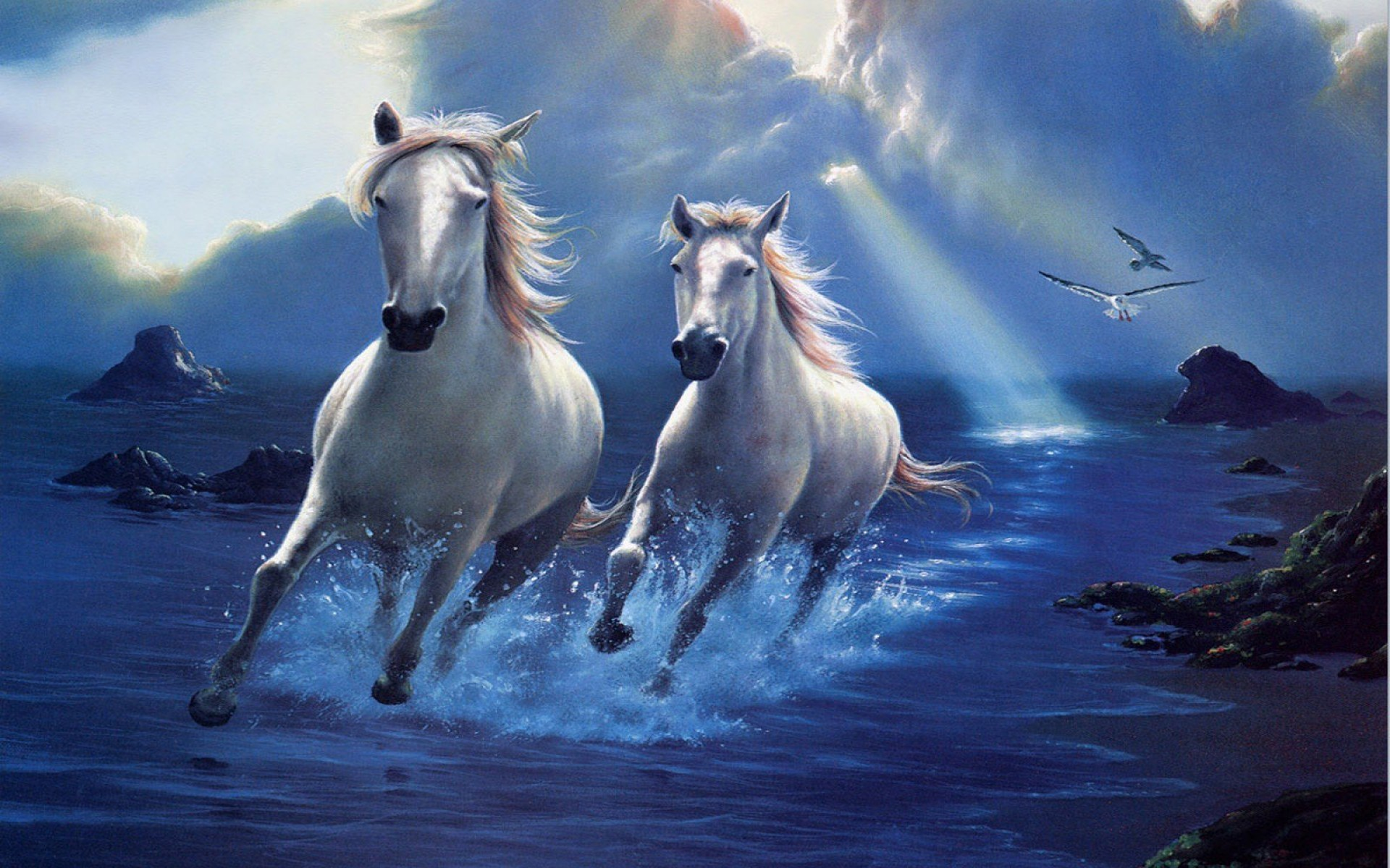 Cute Horse Wallpapers 68 Images