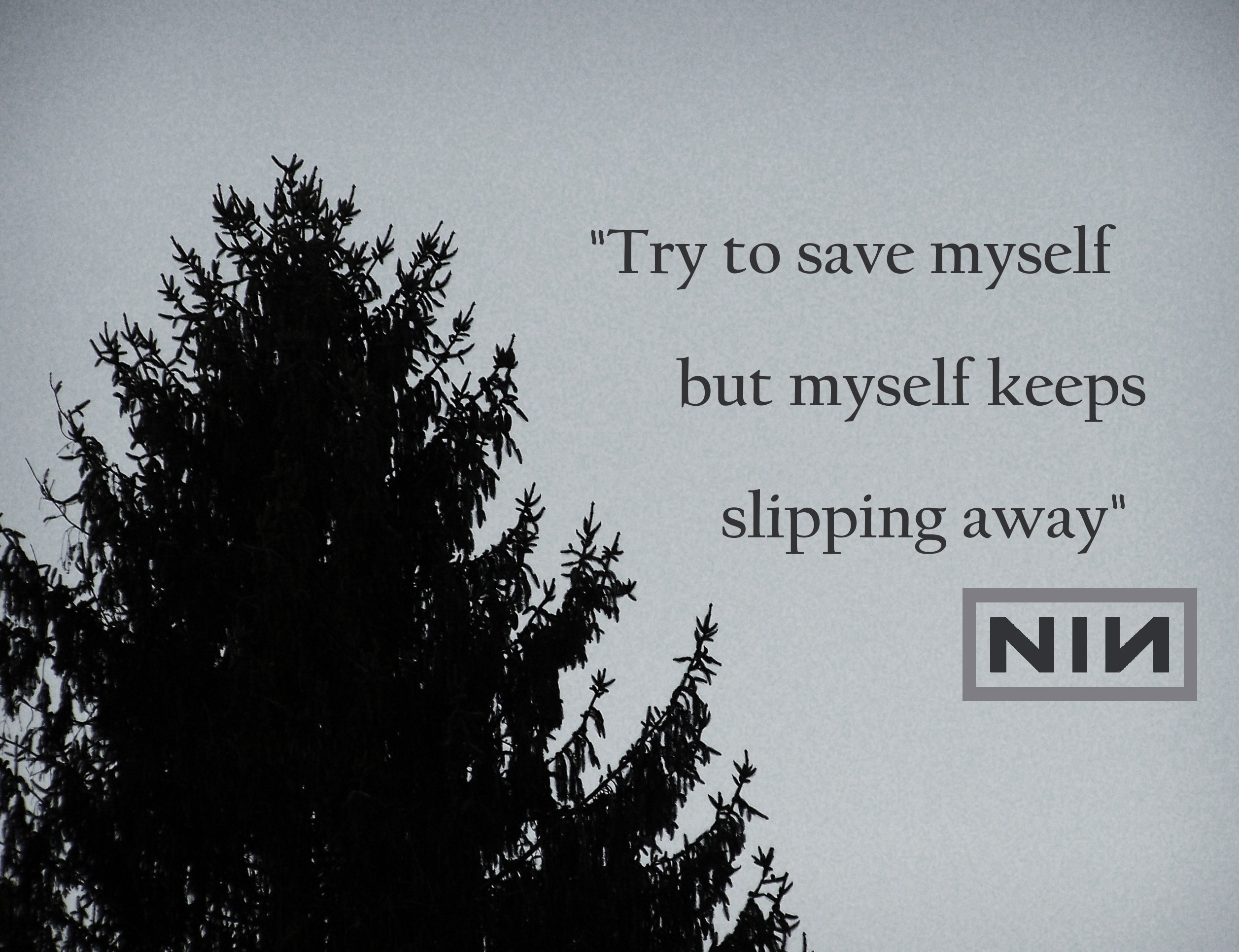 2514x1931 Nine Inch Nails - Into the Void #song #lyrics