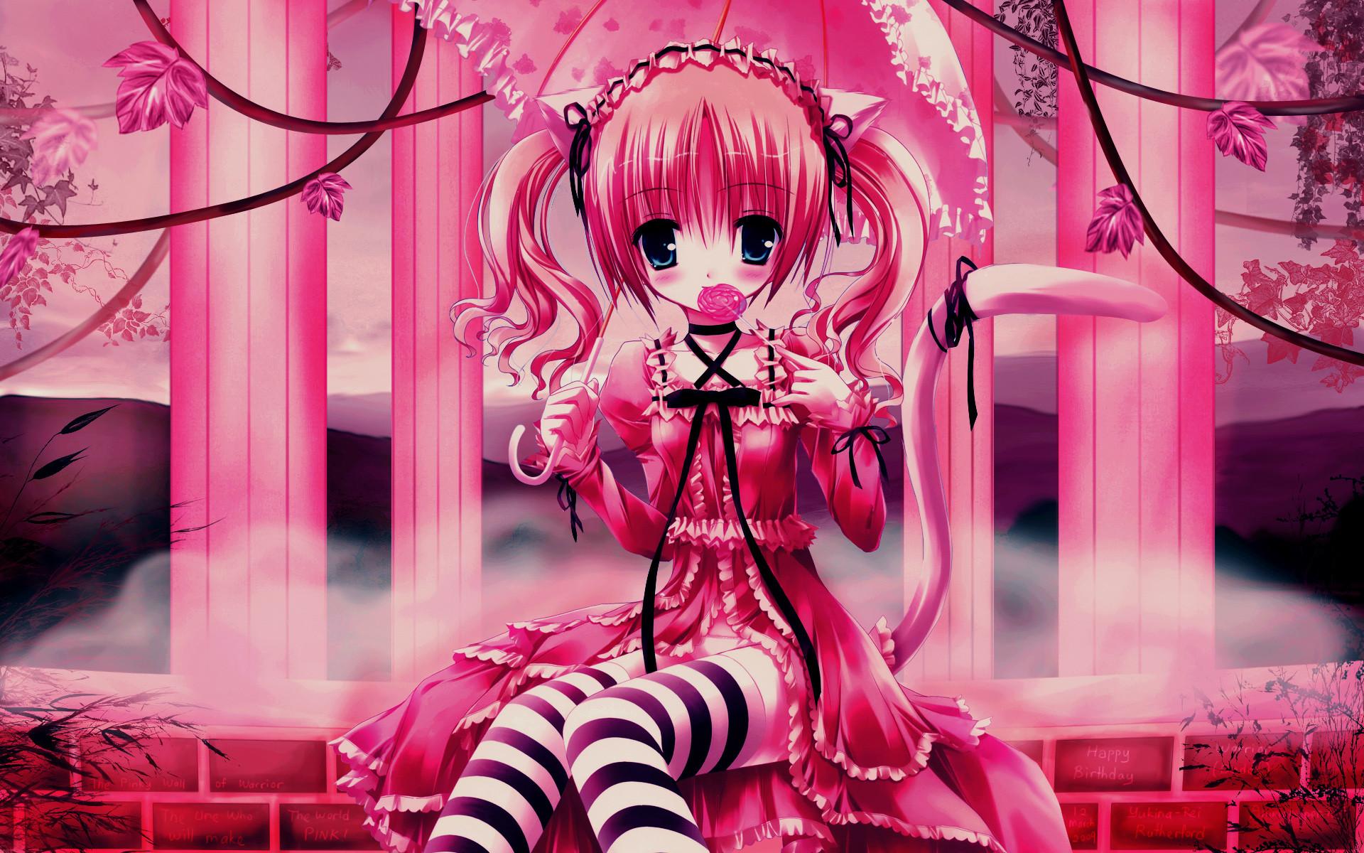 Anime cat girl wallpaper 72 images 2483x1552 cat girl nekomimi art girl superb anime wallpapers hd voltagebd Choice Image