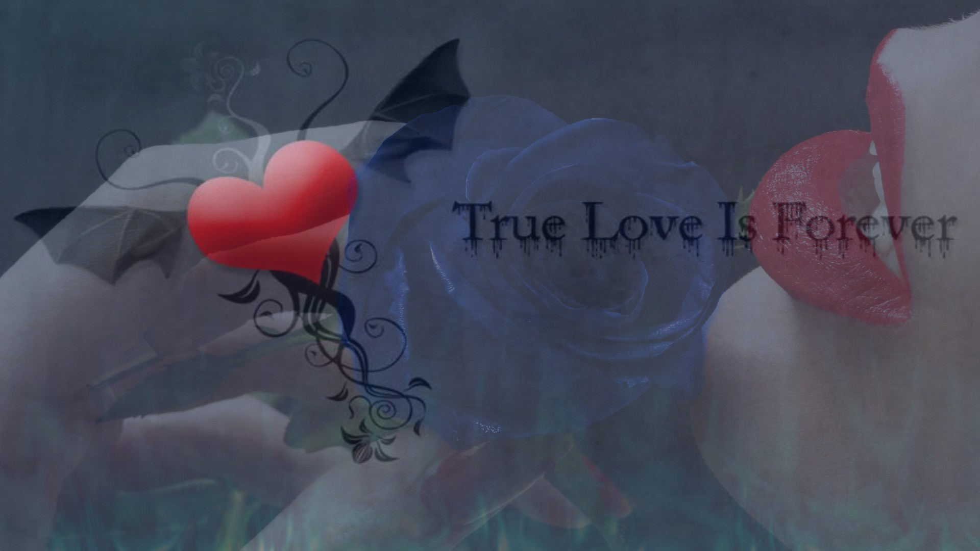 1920x1080 True love is forever wallpaper