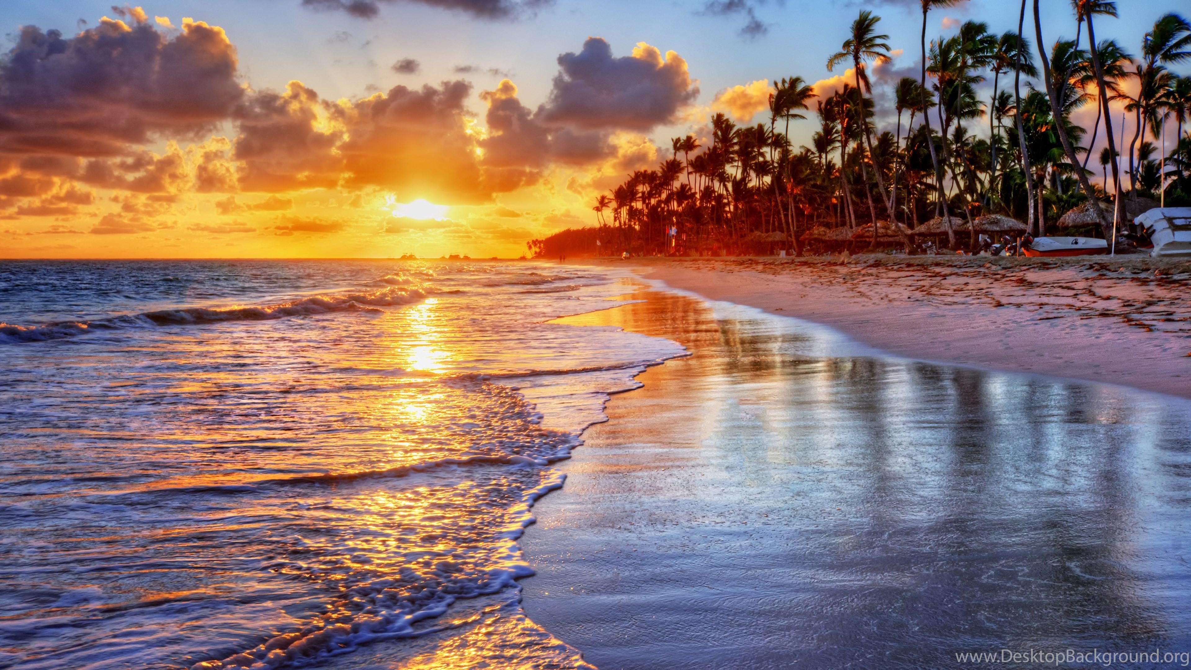 Tropical Desktop Background 56 Images