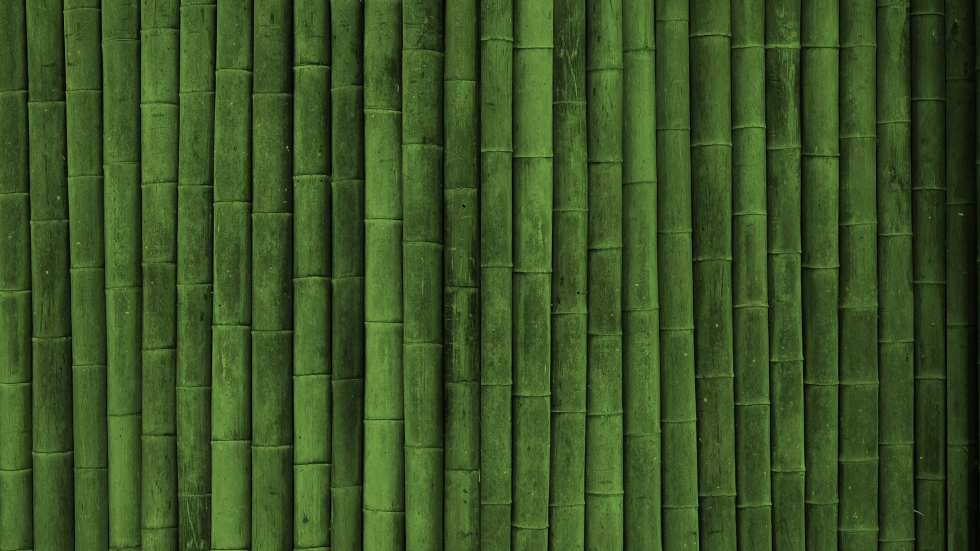 1920x1080 Preview wallpaper bamboo, stick, green, vertical
