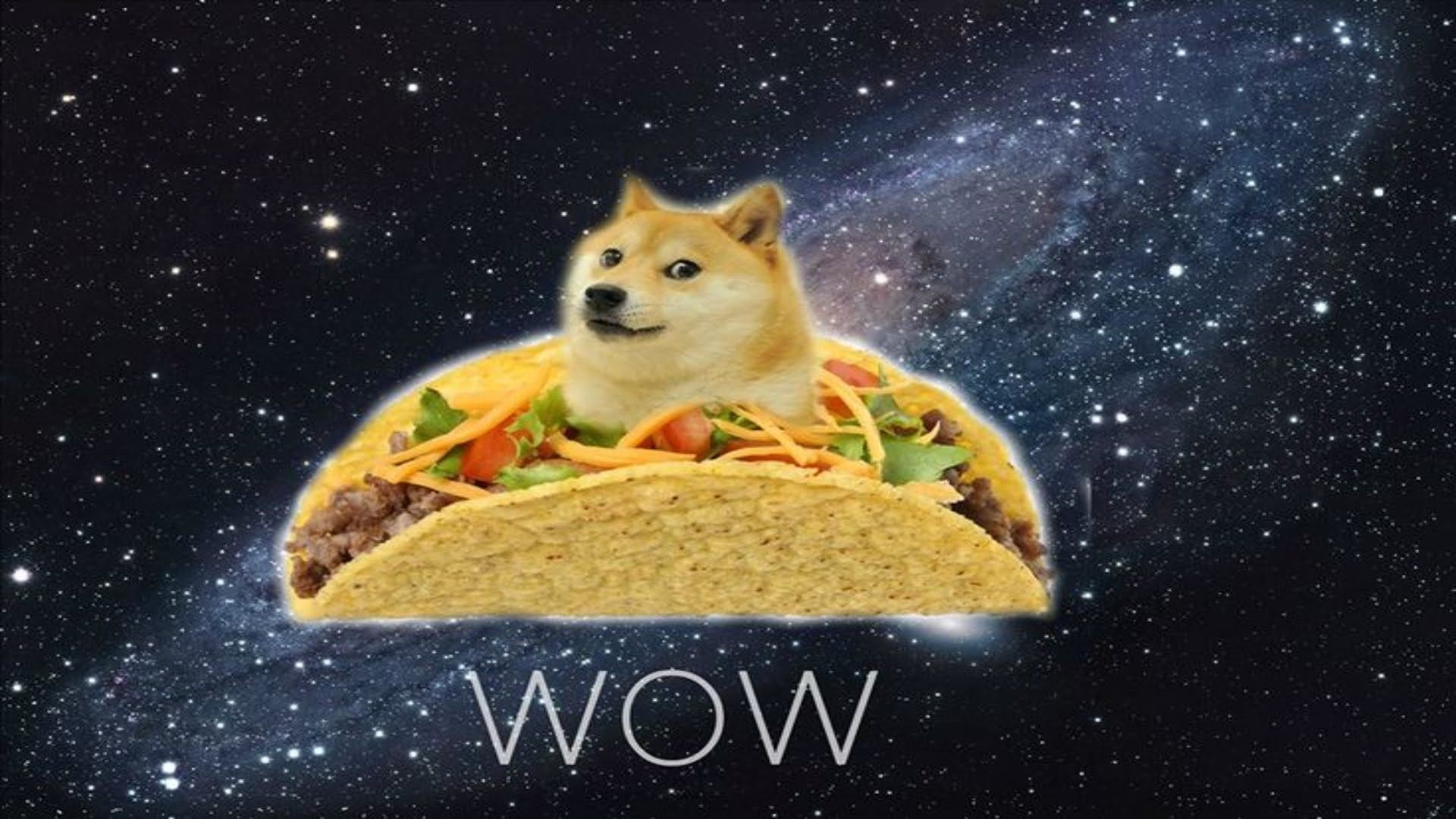 1920x1080 Doge and His Raining Tacos