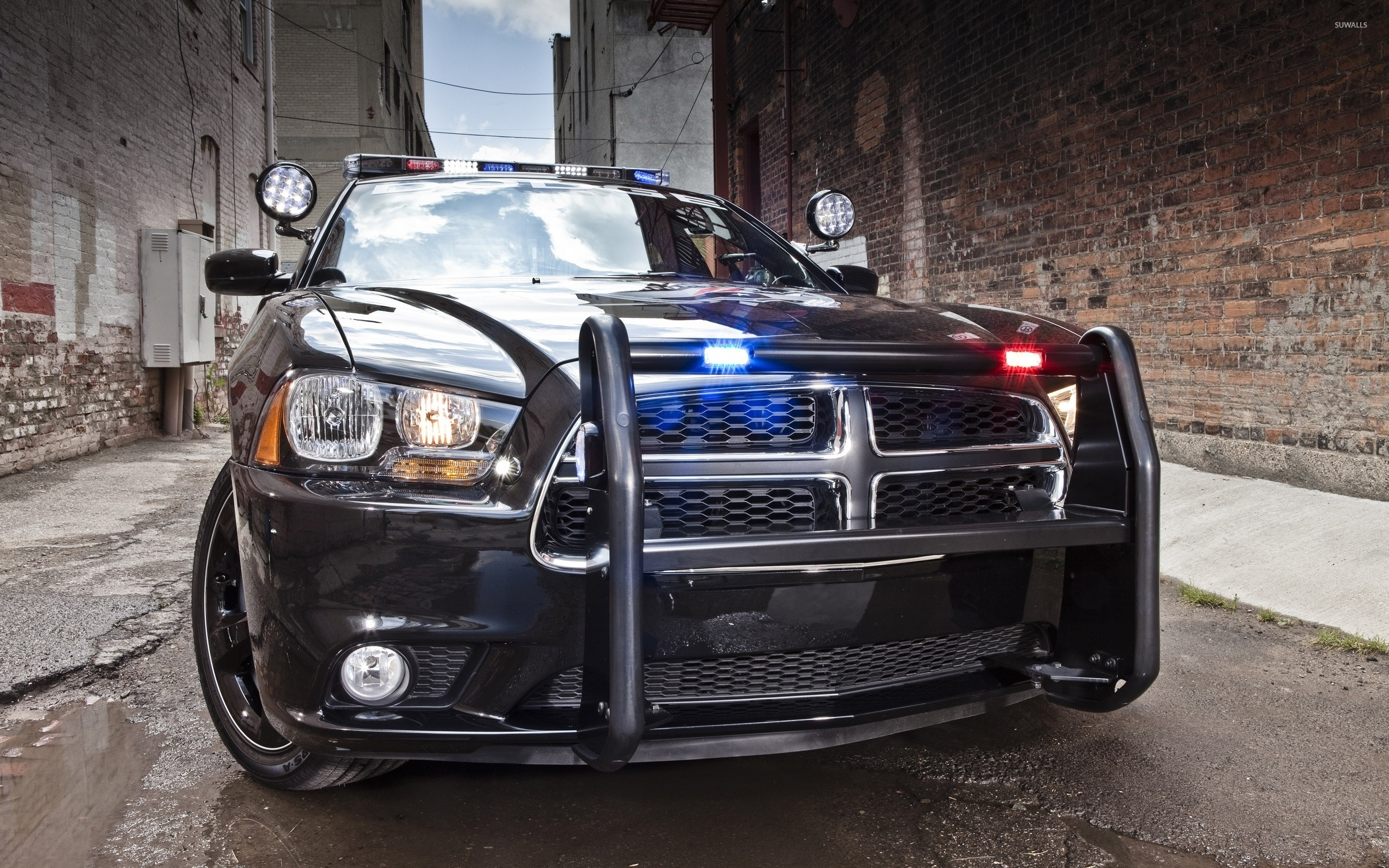 2560x1600 Dodge Charger police car [2] wallpaper