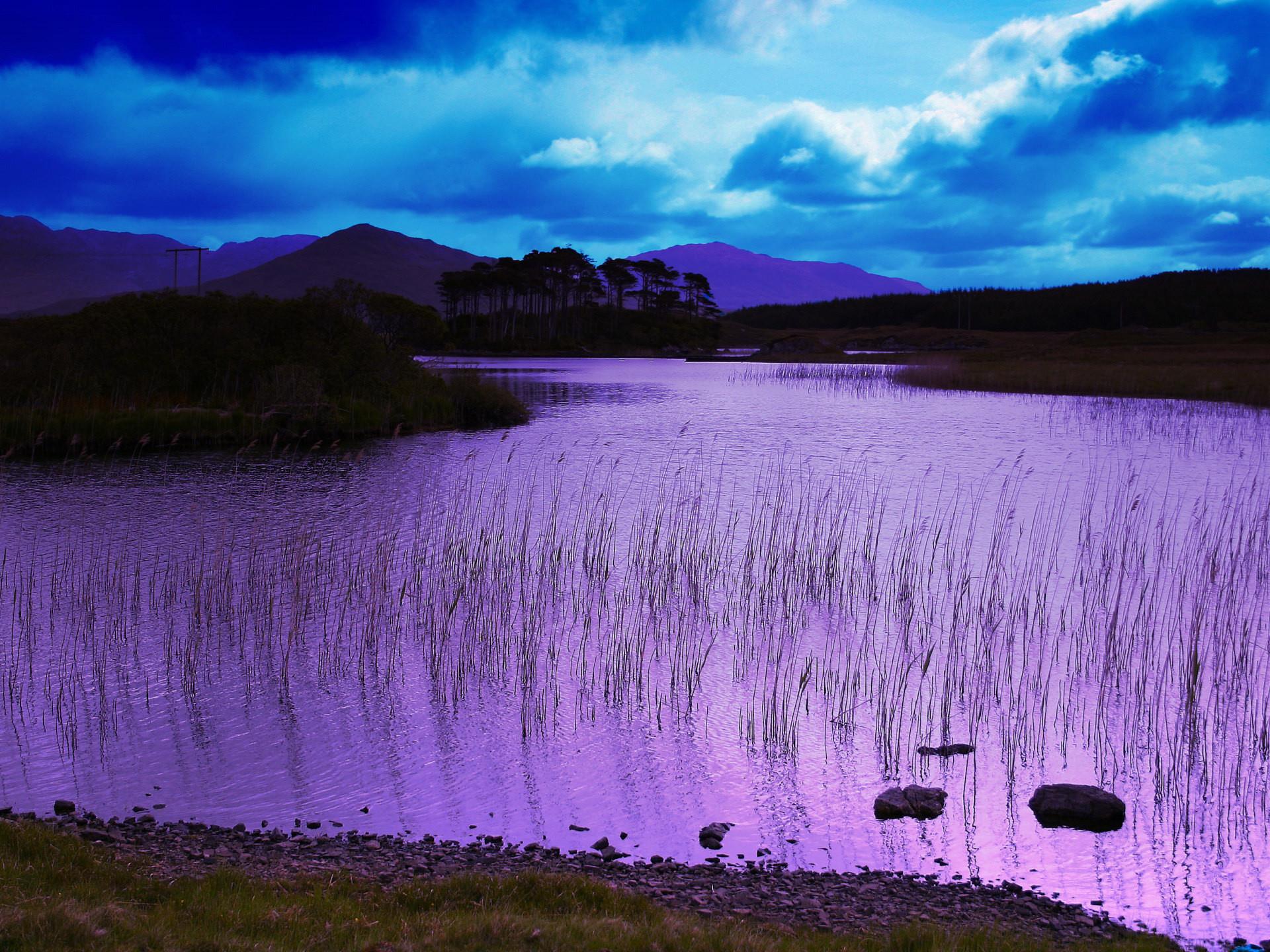 Purple Wallpapers 12 Best Wallpapers Collection Desktop: Nexus Desktop Wallpaper Nature (60+ Images