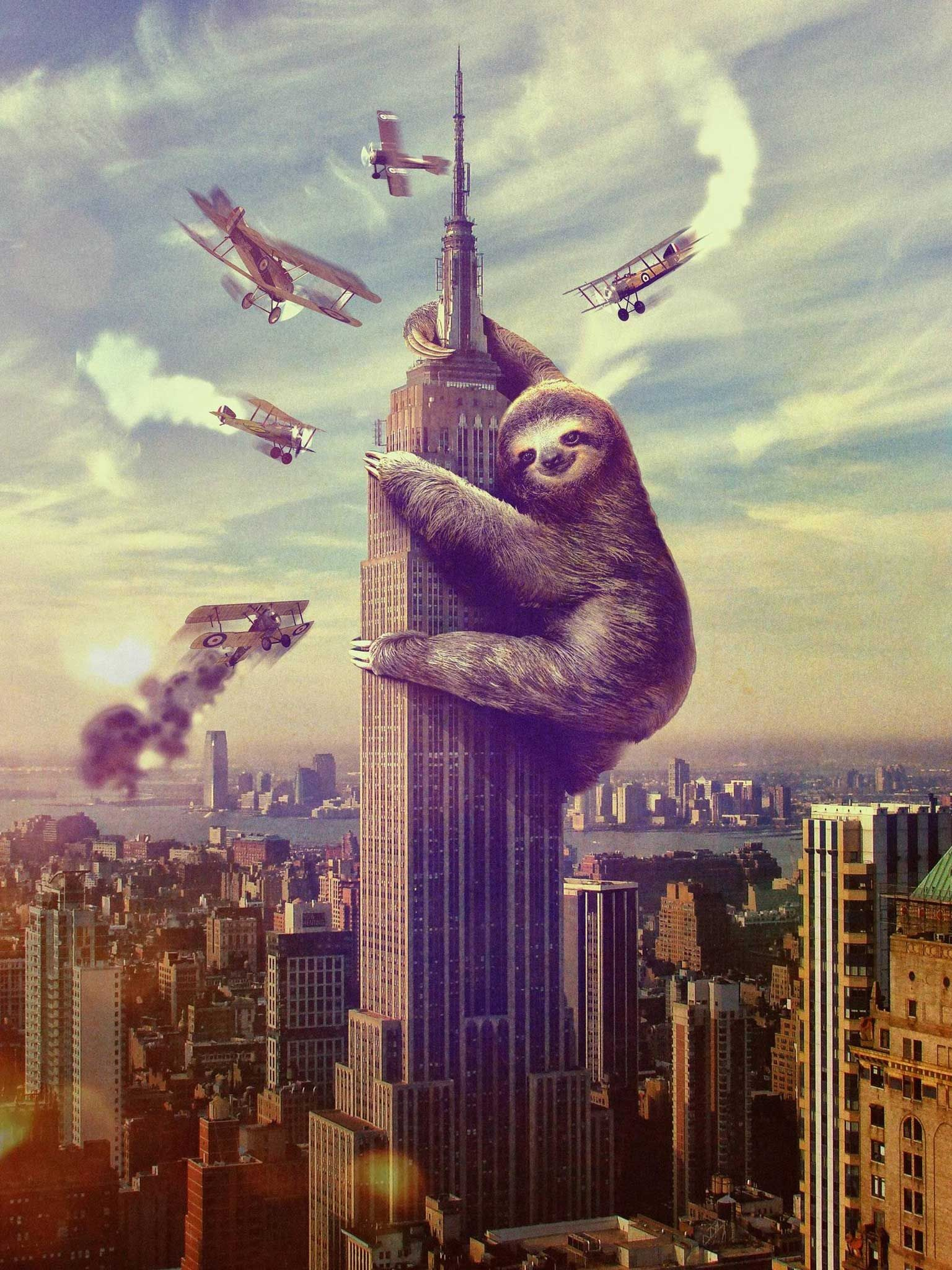 1536x2048 Sloth King Kong Poster Wallpaper  - Wallpaper 38342