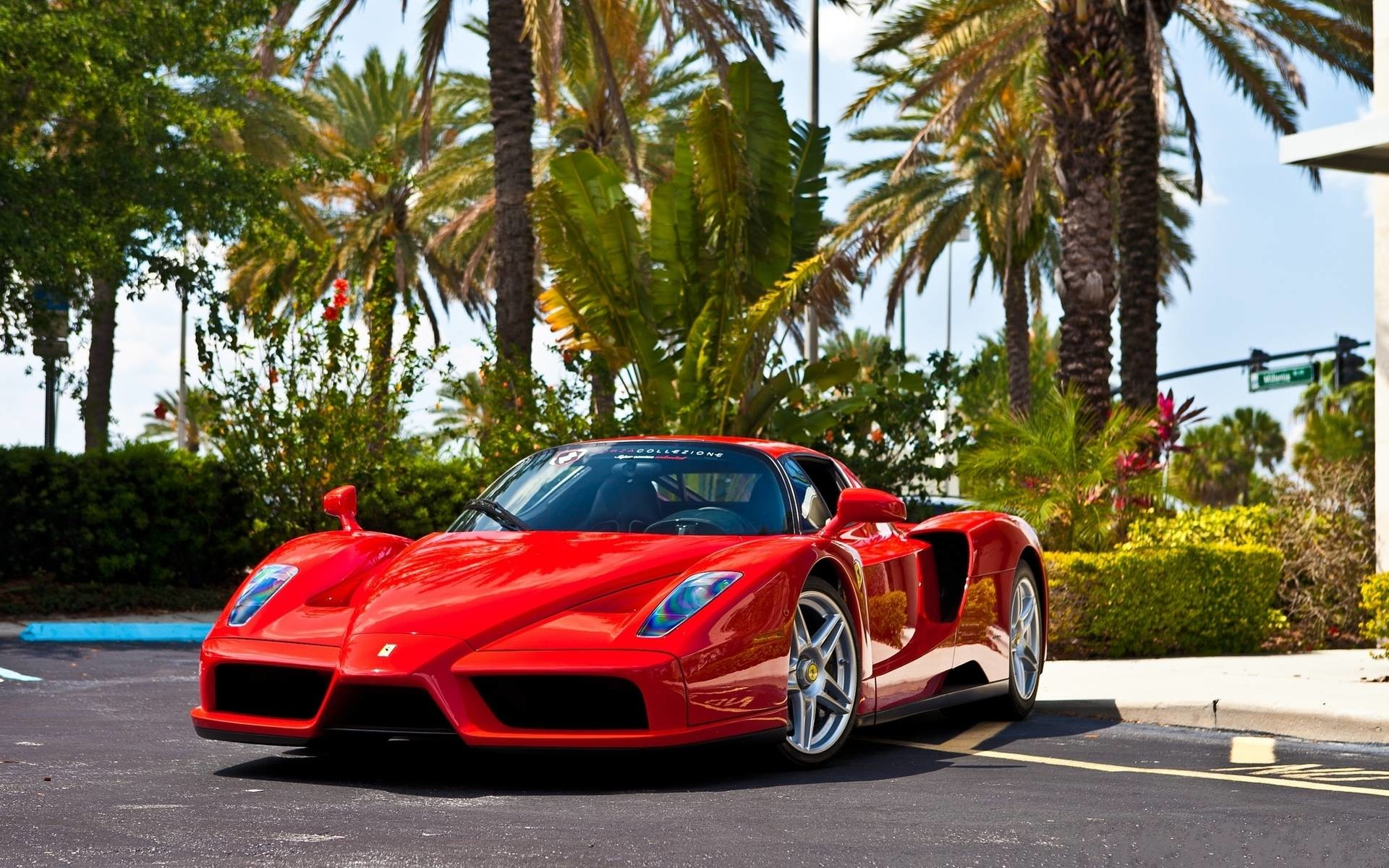 1920x1200 Wallpapers For > Ferrari Enzo Wallpaper Widescreen