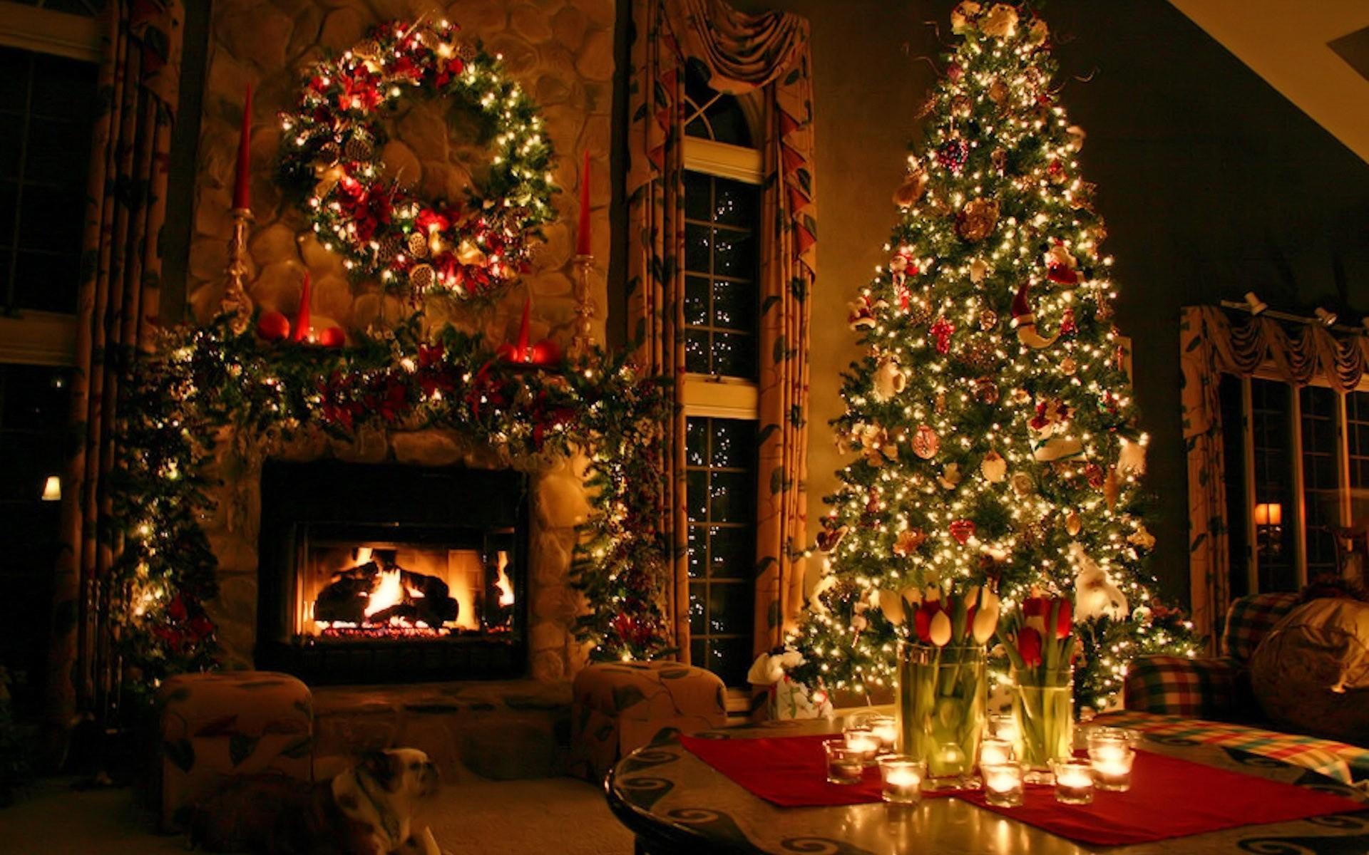 Best Wallpaper Harry Potter Christmas - 543828  Pic_12723.jpg