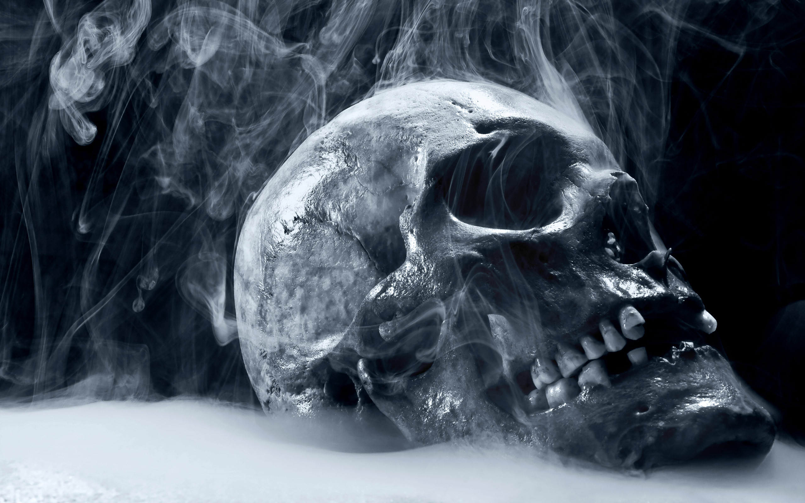 2560x1600 skull wallpapers scary hd