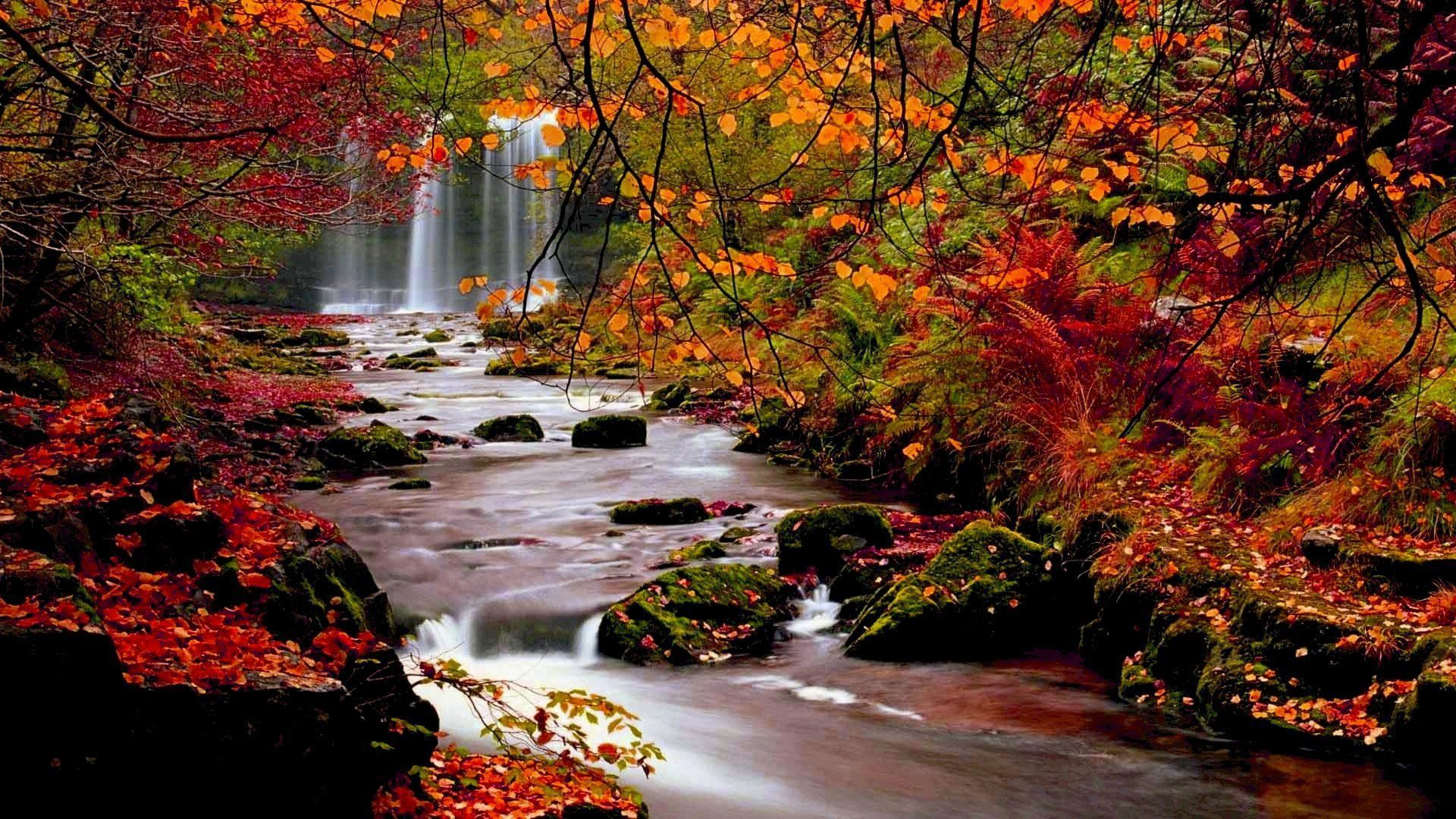 Fall wallpaper for desktop 1920x1080 60 images - Free landscape backgrounds ...