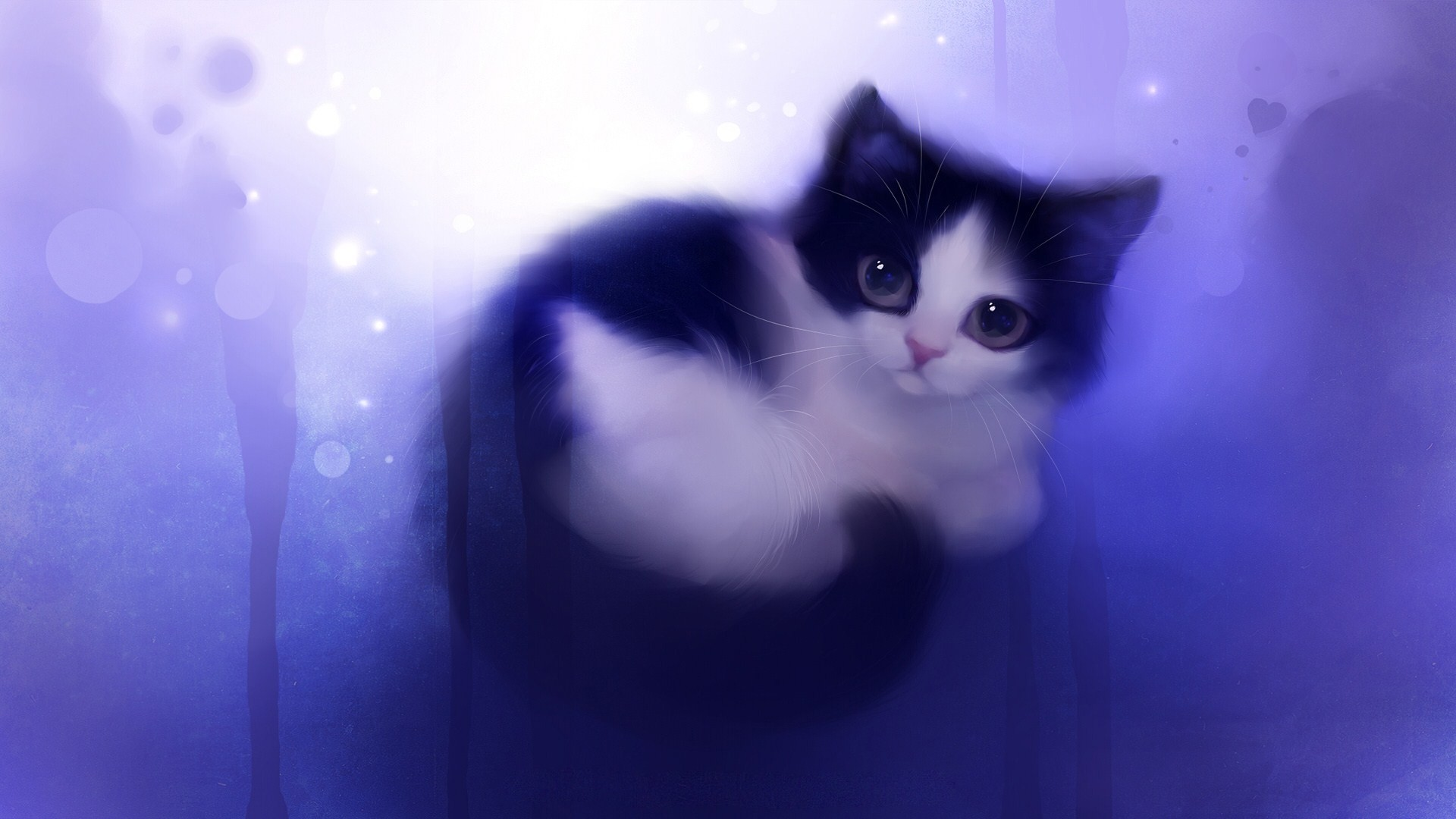 1920x1080 adorable cat wallpaper cute wallpaper share this cute wallpaper on .
