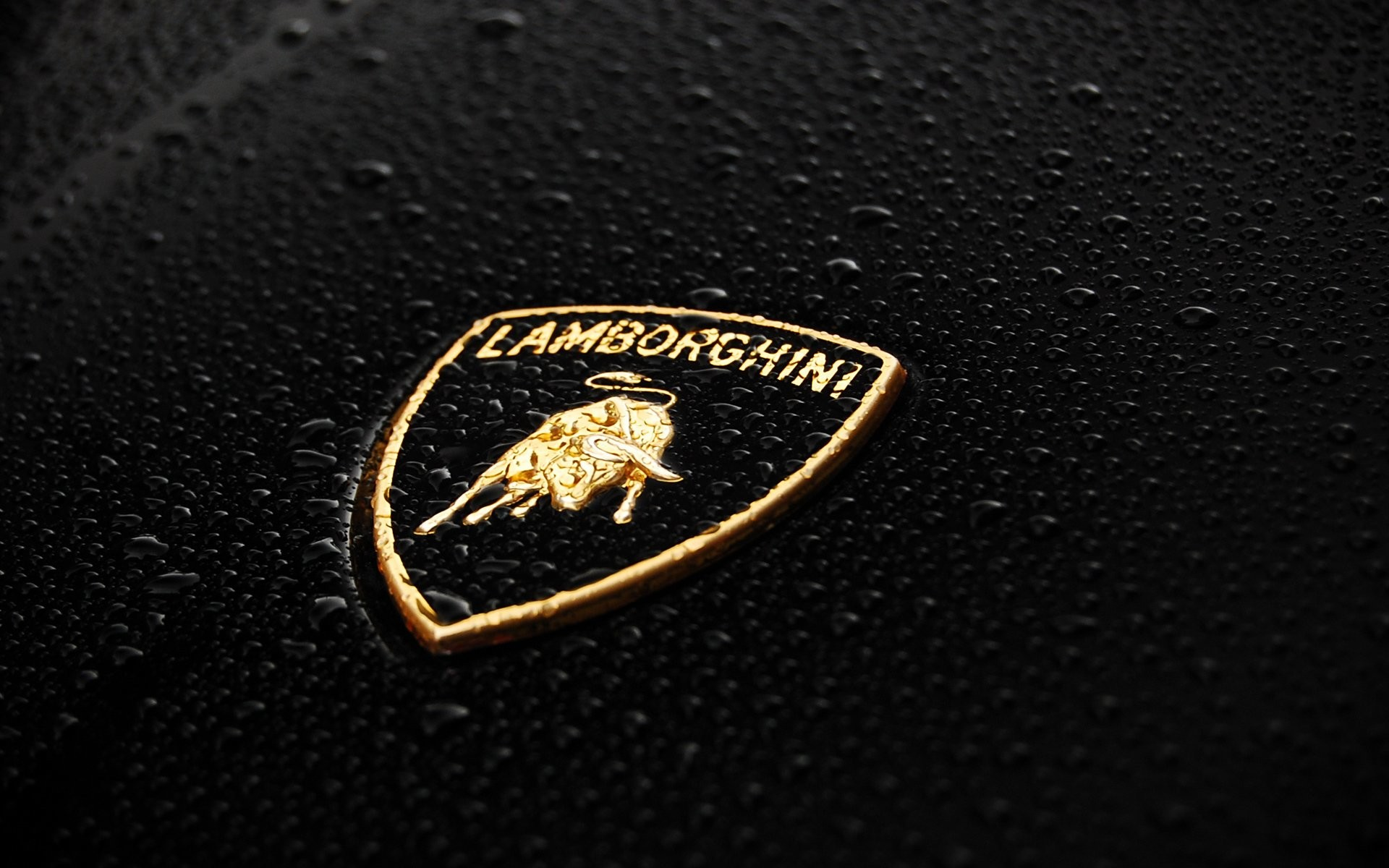 1920x1200 Lamborghini Logo Wallpaper 795409. TAGS: Cool Bulls Logo Lamborghini Chicago