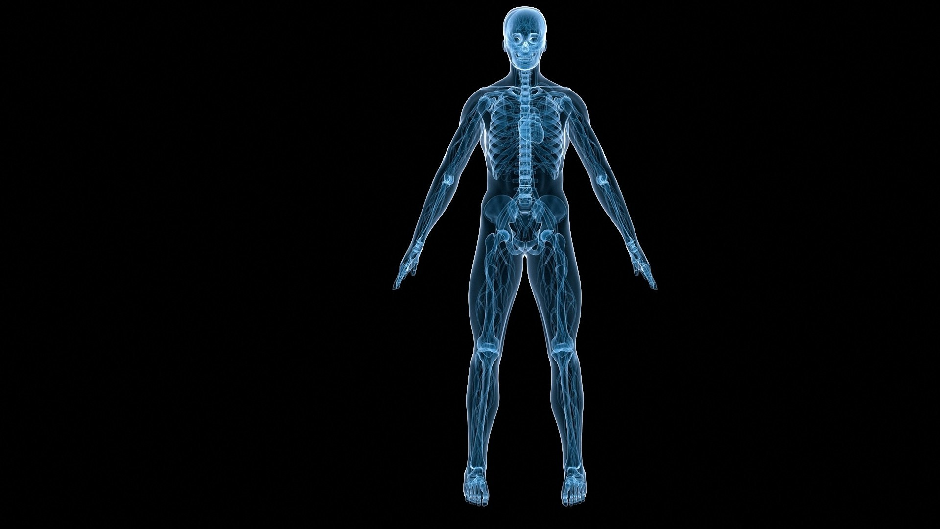 1920x1080 black human skeletons body HD wallpapers