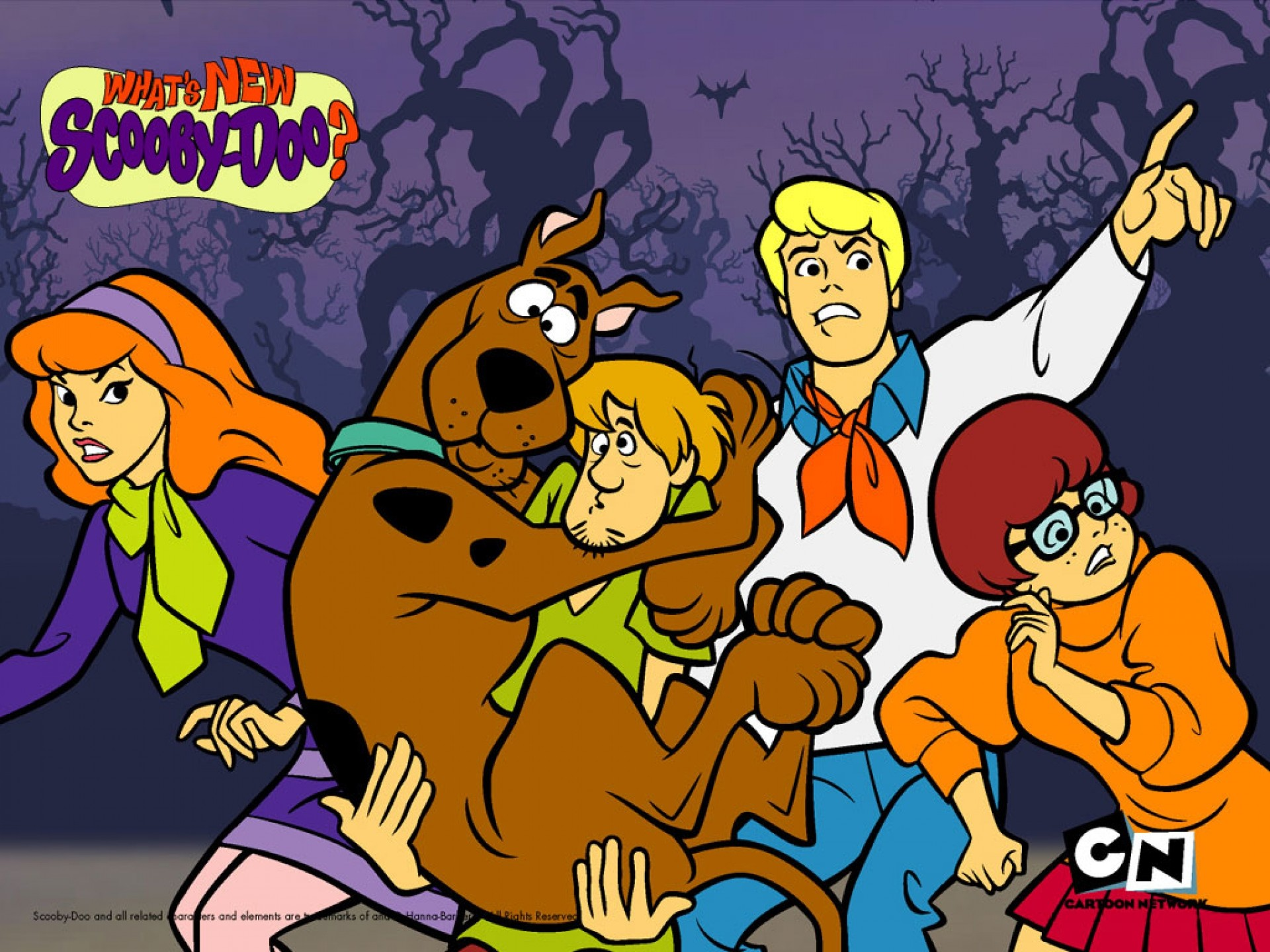 1920x1440 scooby doo | Scooby doo pictures wallpapers free scooby doo downloads  cartoon