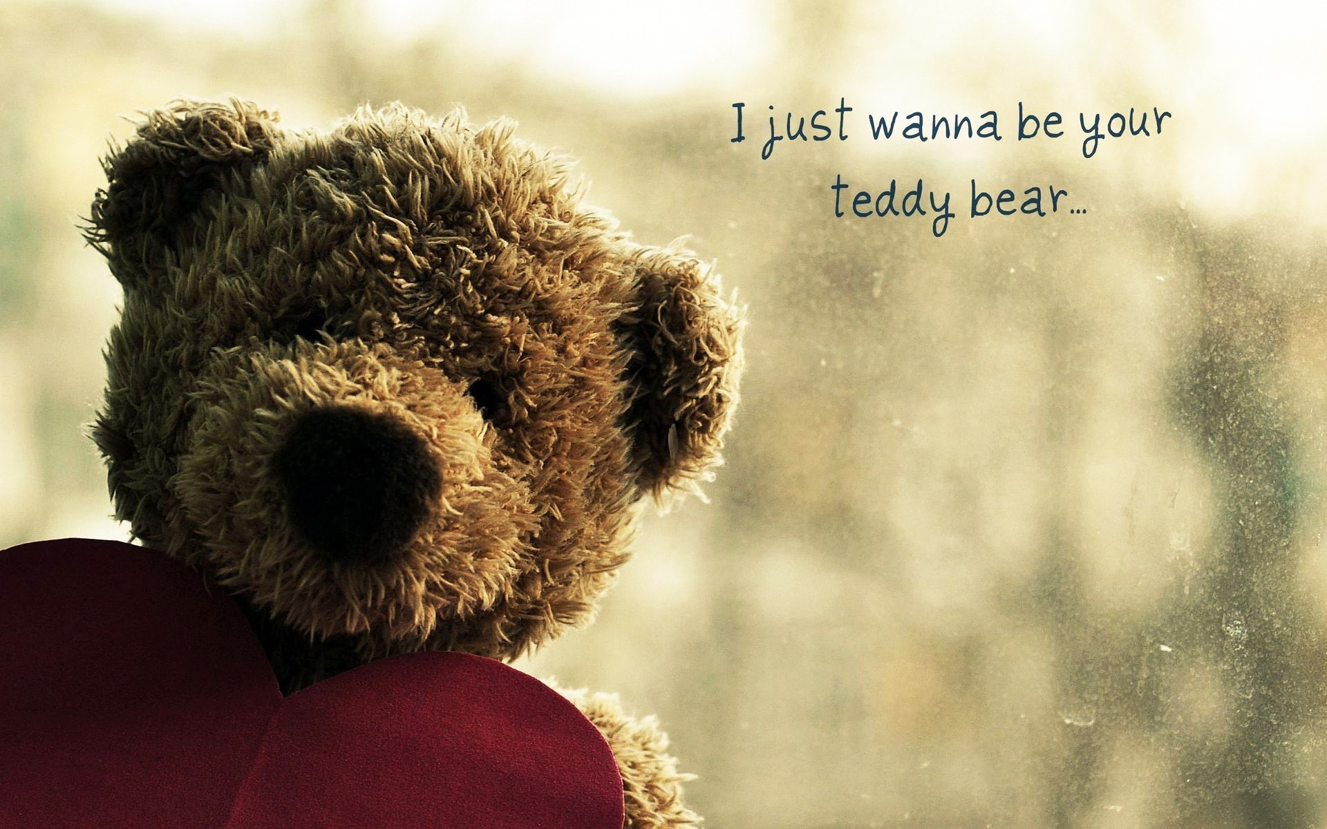 Lonely teddy bear wallpaper